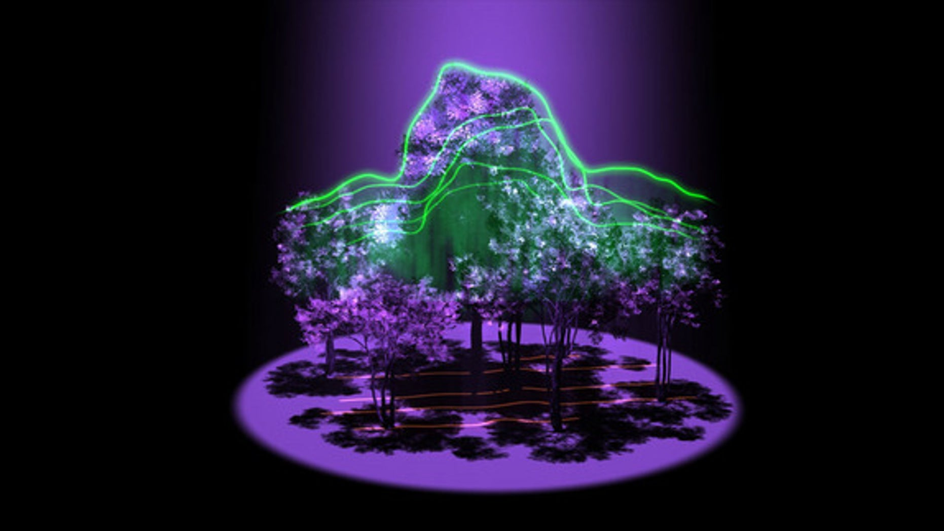 An artist's conception of the 3D maps of forest architecture that data from GEDI could produce.