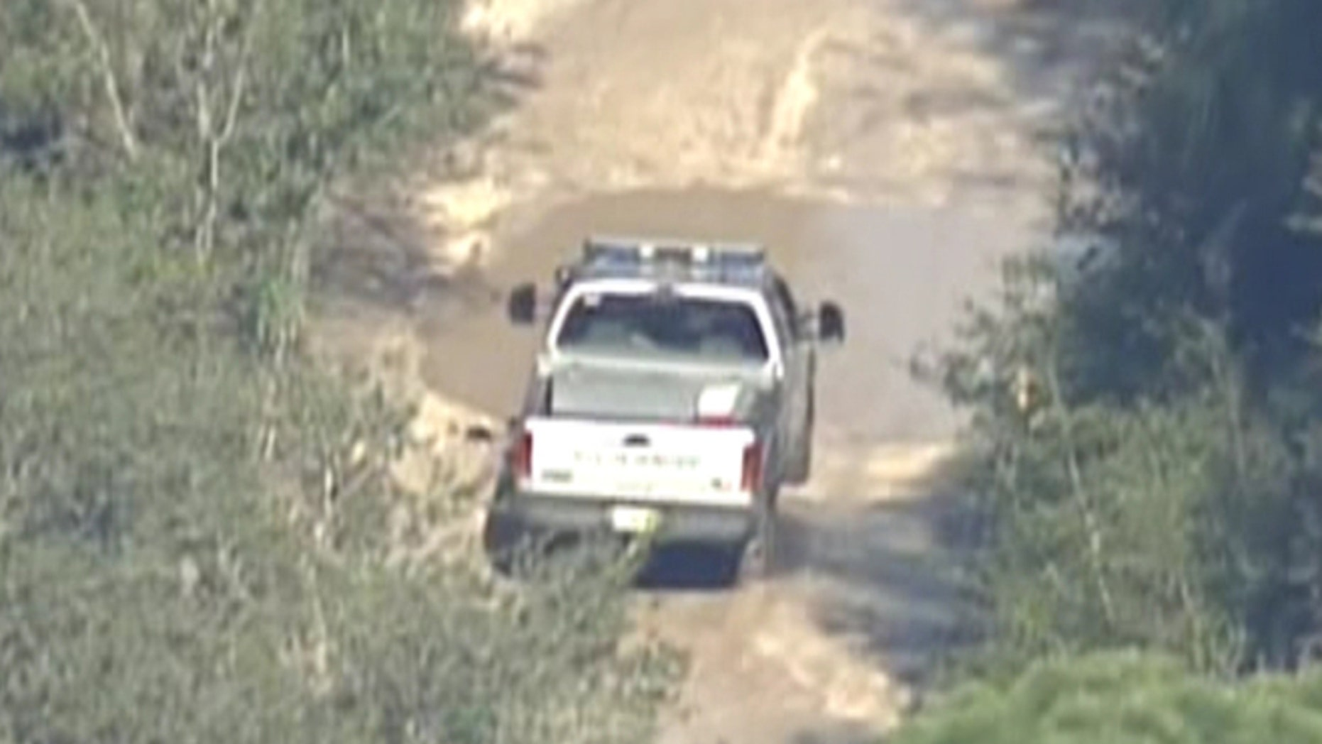 Responders reportedly search for a lion that escaped from its enclosure at the Survival Outreach Sanctuary.