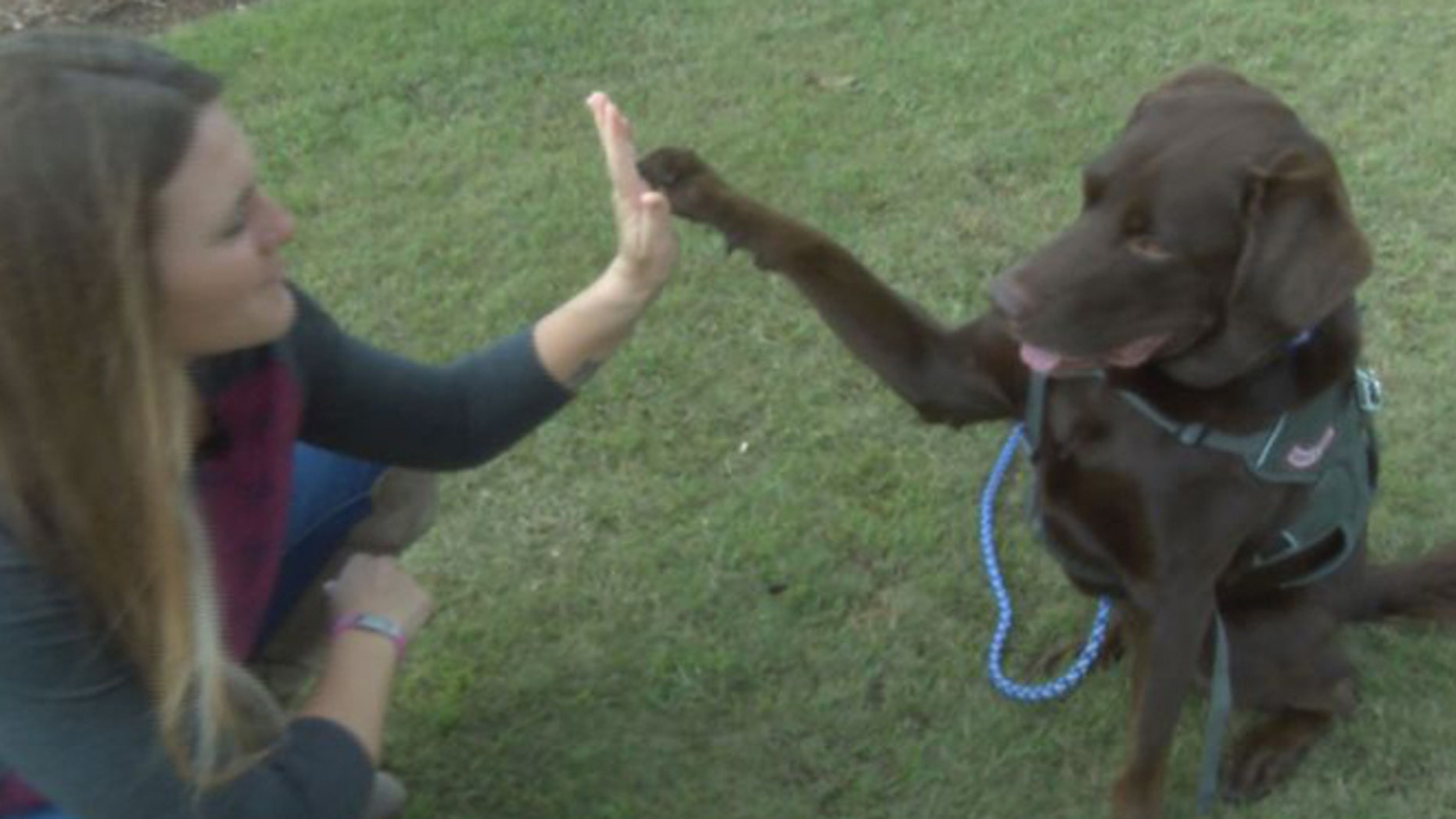 Army vet Lisa Mccombs, of Gulfort, Miss., and her service dog Jake. (WLOX-TV)