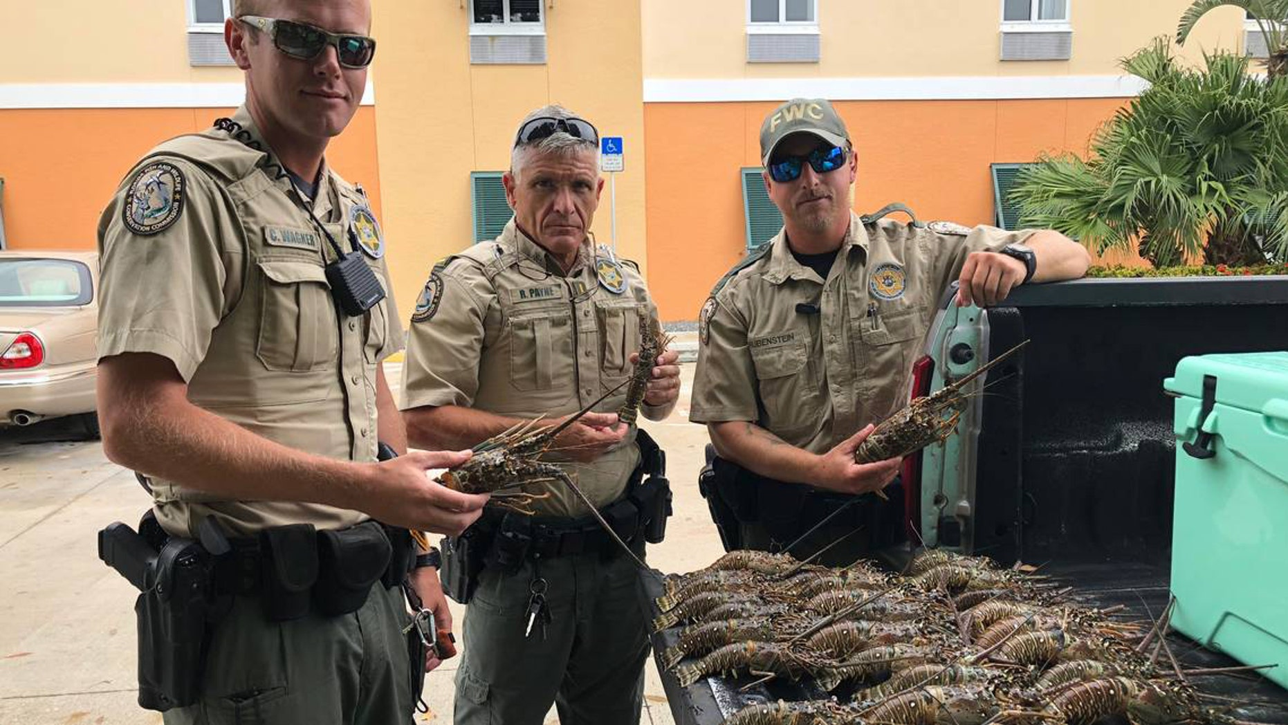 Two Florida men were caught with illegally obtained lobsters in their truck and hotel room.