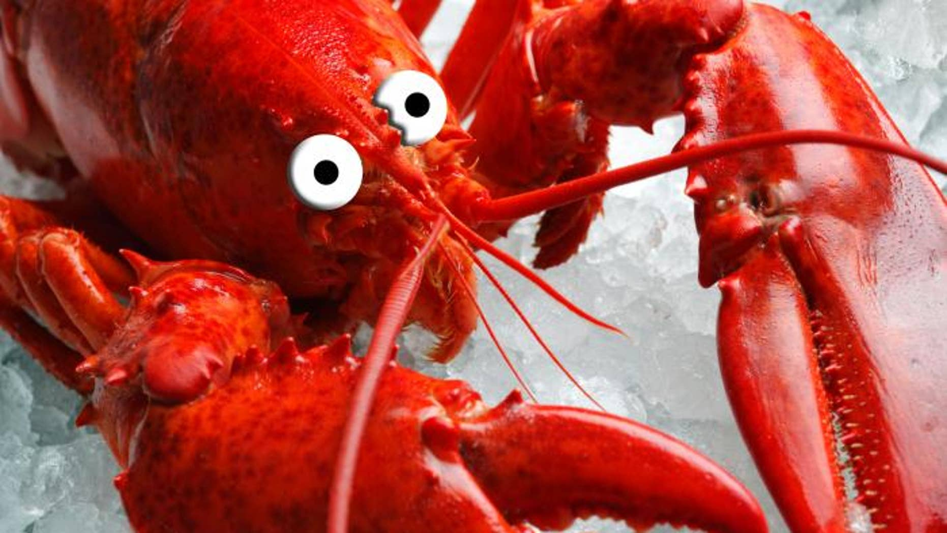 The Truth About Shrimp, Salmon, Lobster, Crab and More | Fox