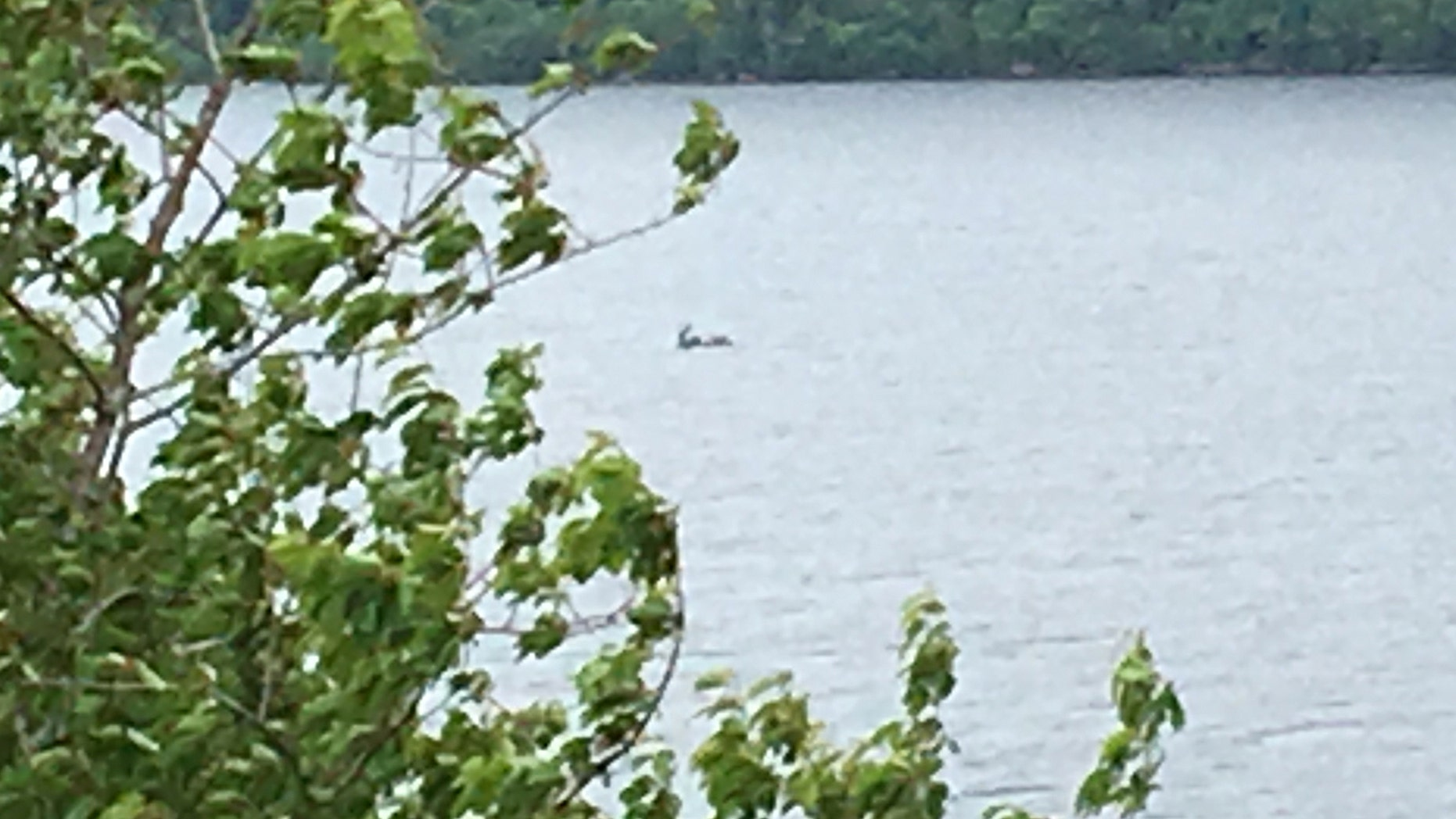 Closeup of the object moving the in waters of Loch Ness (CASCADE NEWS)