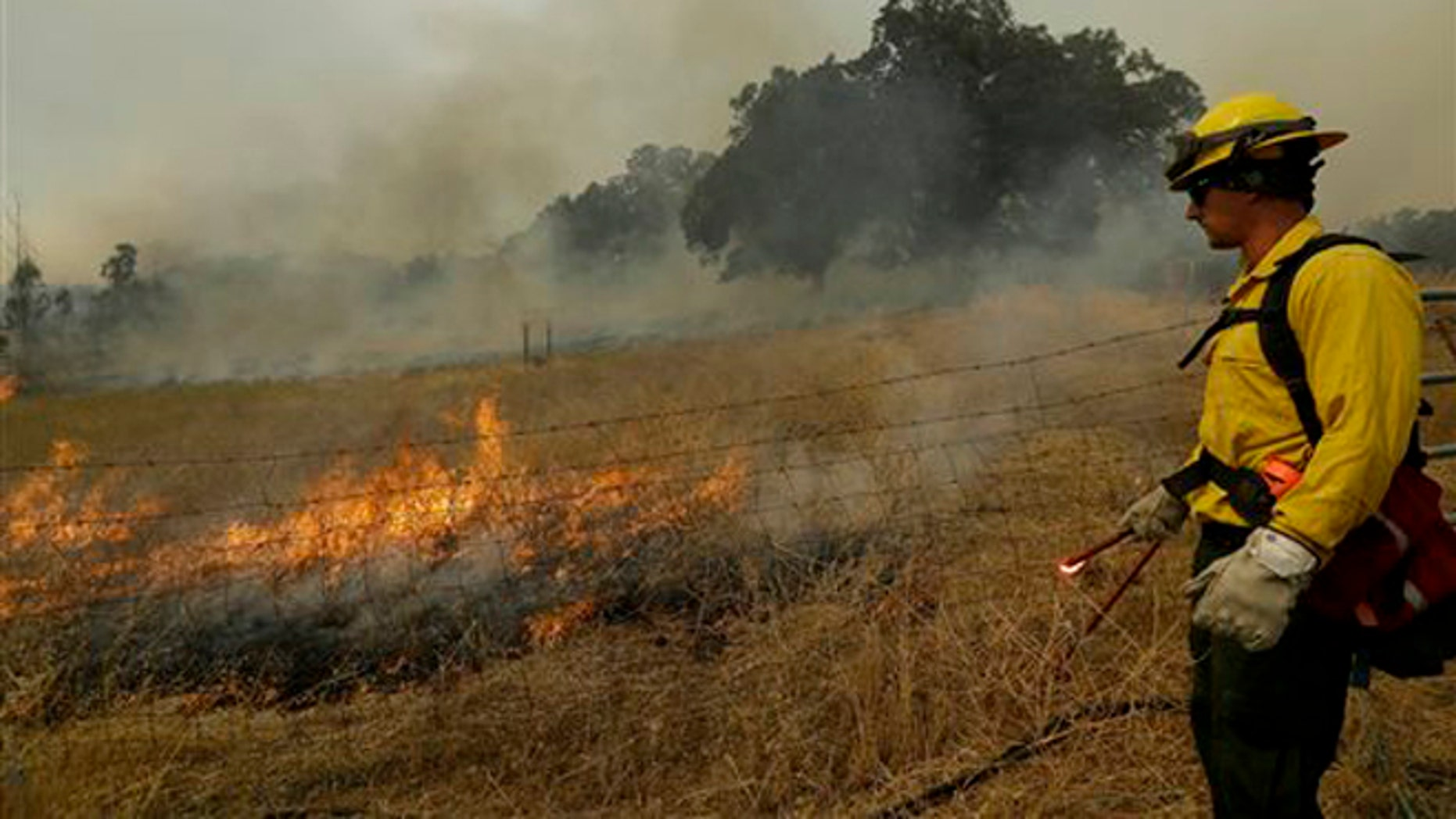 Aug. 12, 2015: A firefighter watches a back fire along Morgan Valley Road near Lower Lake, Calif.