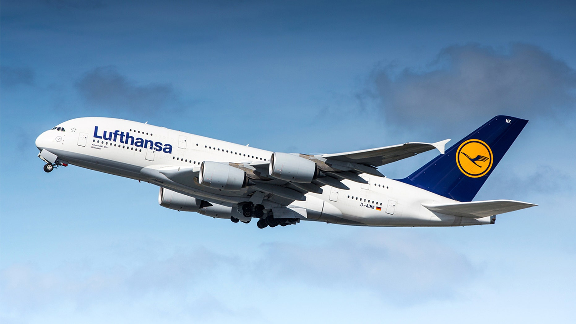 Lufthansa said the dog was injuring himself, prompting crews to remove him from the flight.