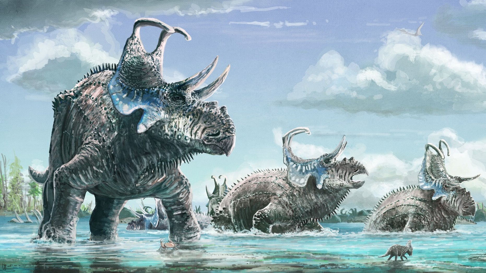 An artist's reconstruction featuring Machairoceratops cronusi, a new species of horned dinosaur from the Late Cretaceous. (Mark Witton)