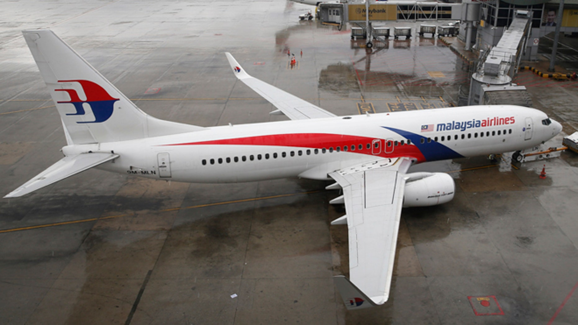 FILE: A Malaysia Airlines Boeing 737-800 plane sits on tarmac at Kuala Lumpur International Airport in Sepang, Malaysia.