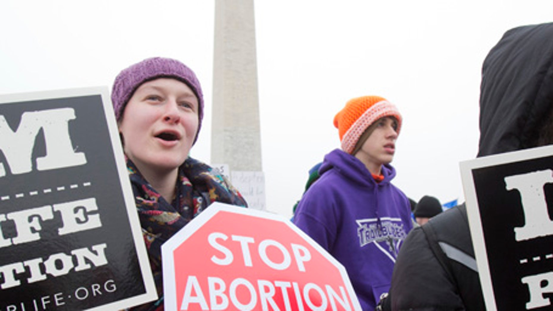 Demonstrators take part in the 2016 March for Life