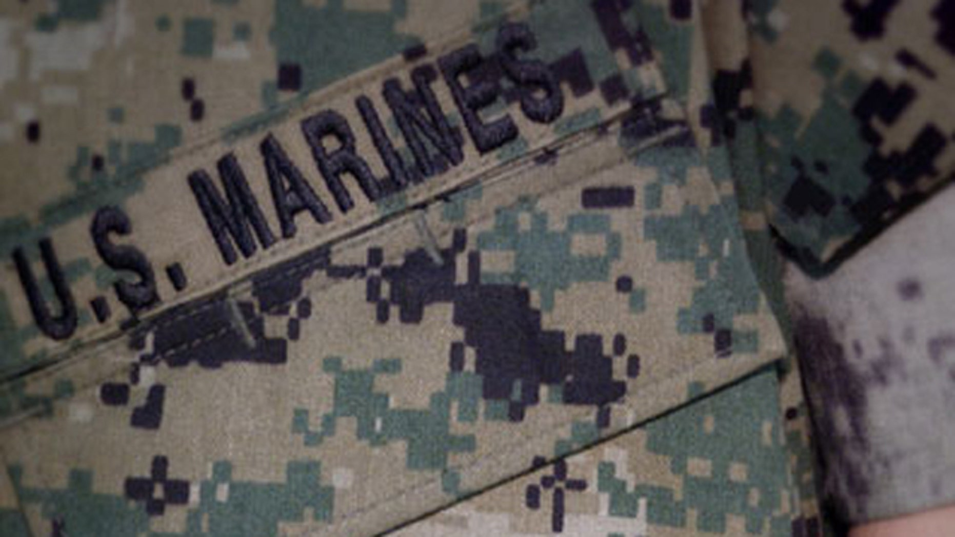 Shown here is the Marine Corps' combat uniform.