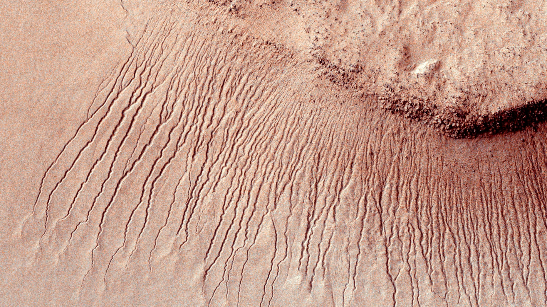 Portions of the Martian surface shot by NASA's Mars Reconnaissance Orbiter show many channels from 1 meter to 10 meters wide on a scarp in the Hellas impact basin, in this photograph taken January 14, 2011. (REUTERS/NASA/JPL-Caltech/Univ. of Arizona/Handout)