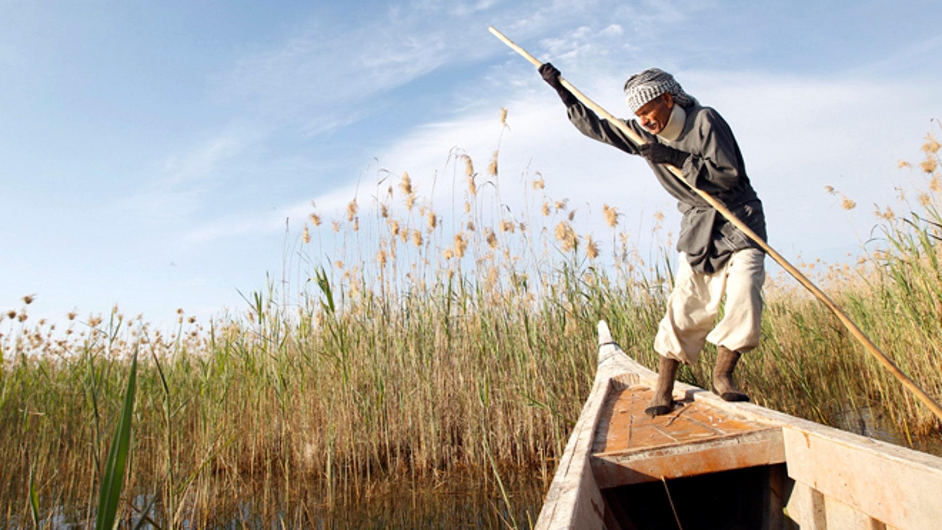 Marsh Arab Abu Sabah paddles his boat at the Chebayesh marsh in Nassiriya, 300 km (185 miles) southeast of Baghdad.