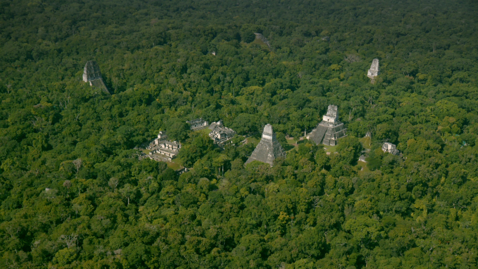 Aerial view of the ancient Maya city of Tikal in Guatemala. (National Geographic)
