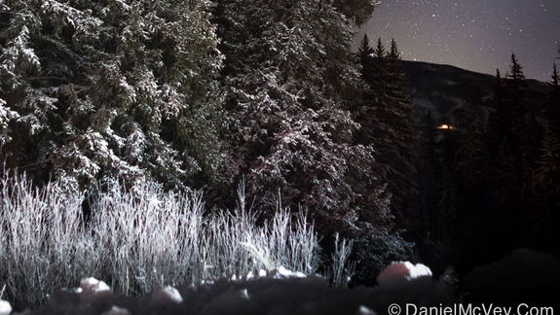 """Astrophotographer Daniel McVey sent in this photo of Orion taken in Colorado, Dec. 11, 2012. He writes: """"Snow covered trees and Orion high in the sky are sure signs that winter has arrived in Summit County, Colorado."""" This scene is actually com"""