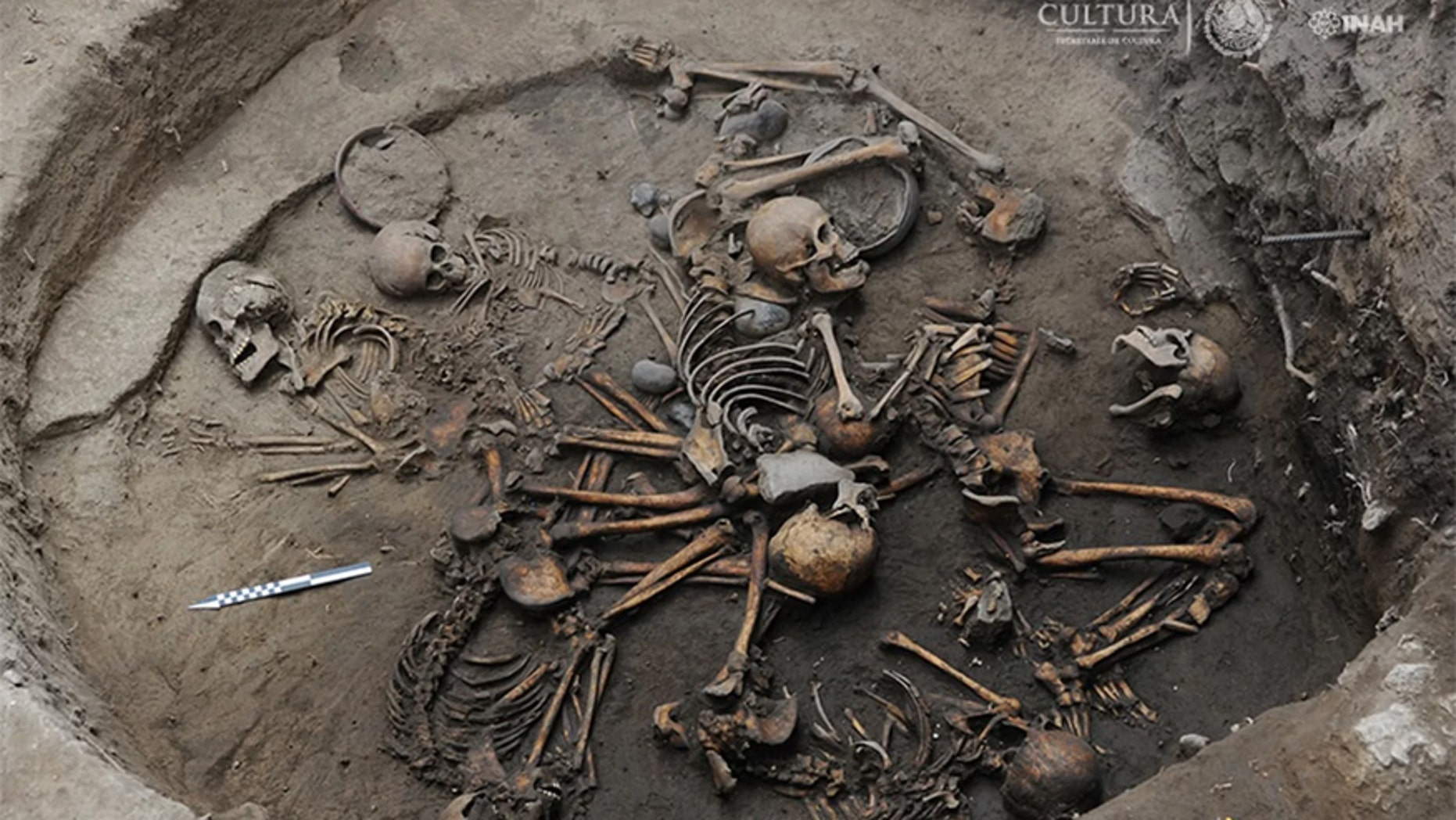 Archaeologists in Mexico City have discovered the burial of 10 skeletons arranged in a spiral, with two of the skeletons showing intentional skull deformation. Credit: INAH