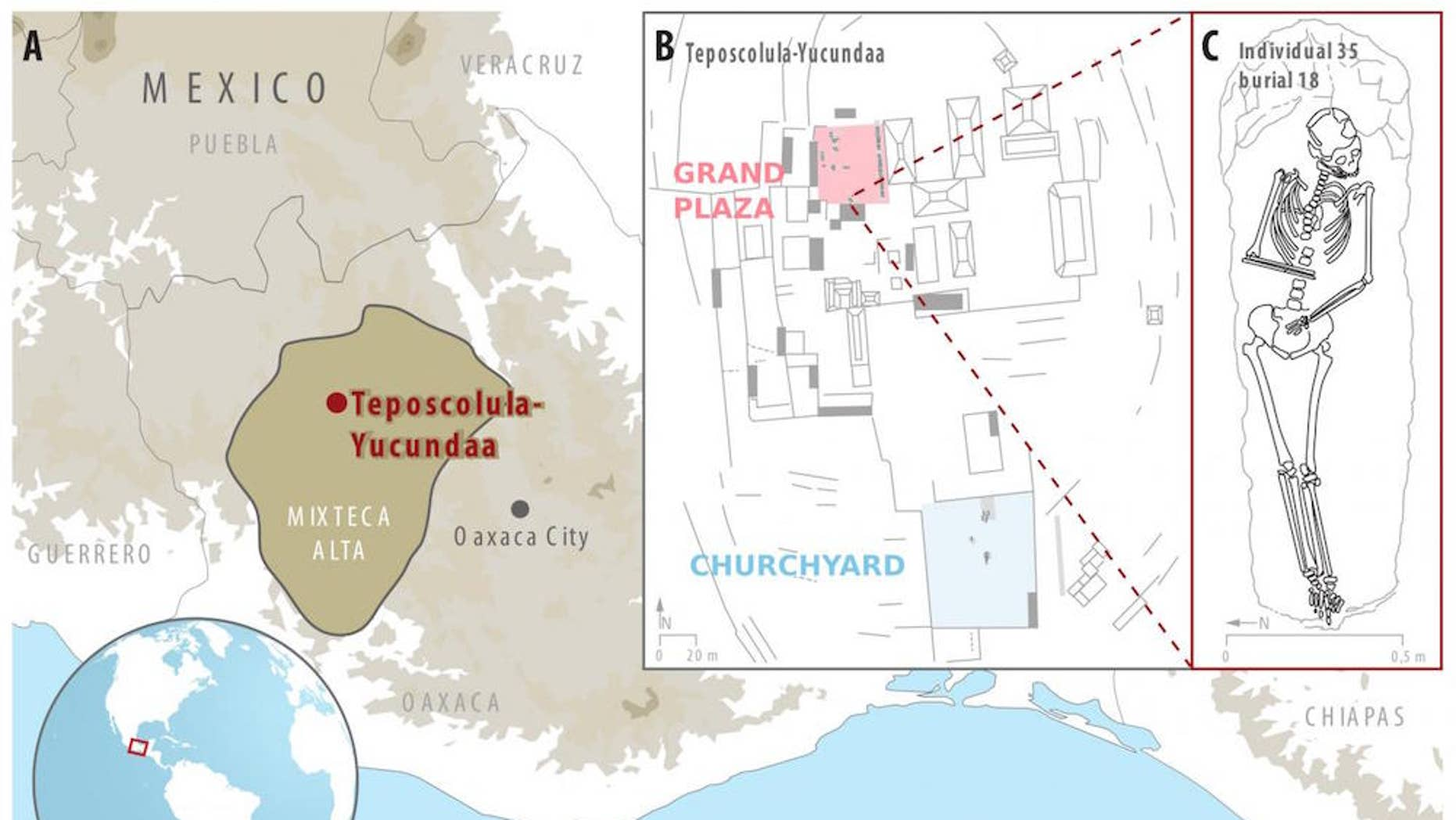 A map (A) showing Teposcolula-Yucundaa in southern Mexico, including where the excavations took place and (B) a drawing of one of the individuals (C) that had <i>Salmonella enterica</i>.