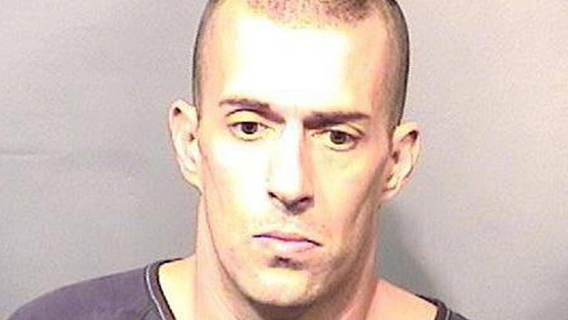 Michael Wolfe pleaded guilty on Tuesday to a criminal mischief charge.