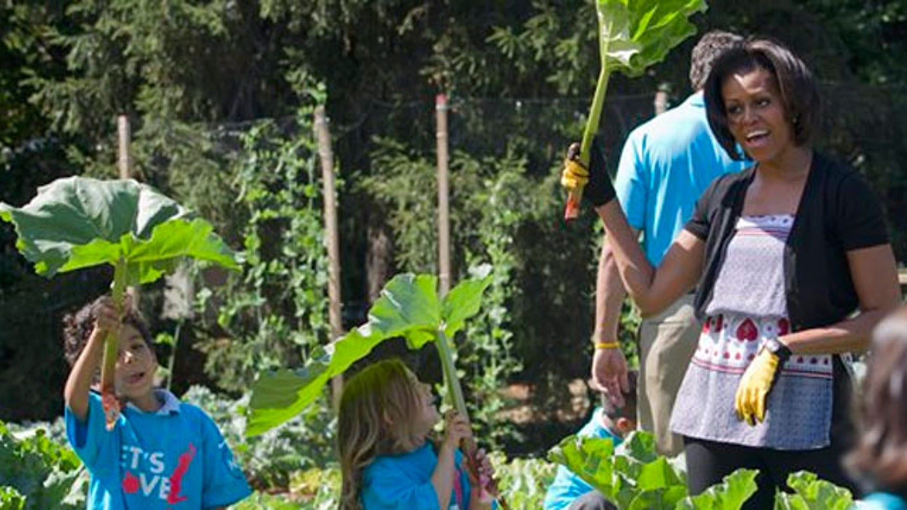 June 3, 2011: First lady Michelle Obama pretends that a rhubarb plant is an umbrella with a group of children during an event at the White House garden in Washington.