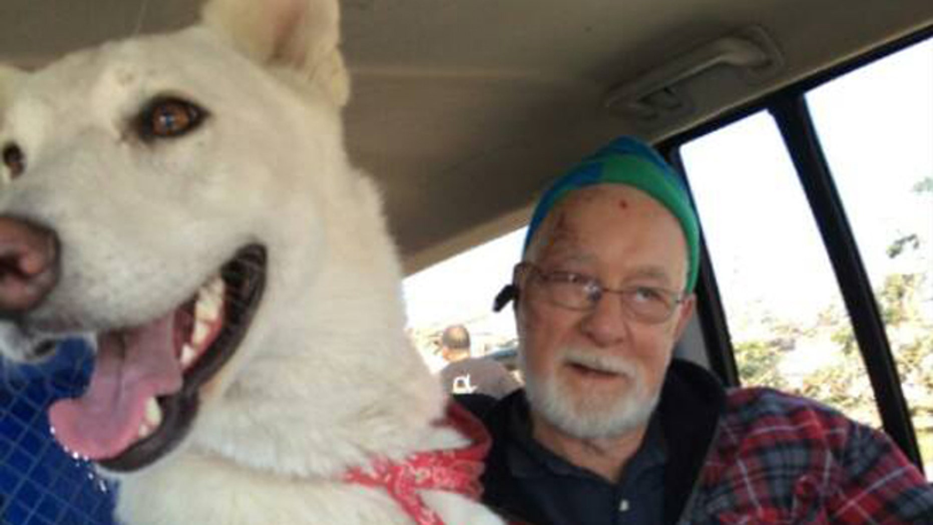 """Missy, a white German shepherd who disappeared following a tornado that hit Fairdale, Ill., on Thursday, was reunited with her family on Saturday, according to """"The Search for Missy"""" Facebook page, where this photo was posted."""