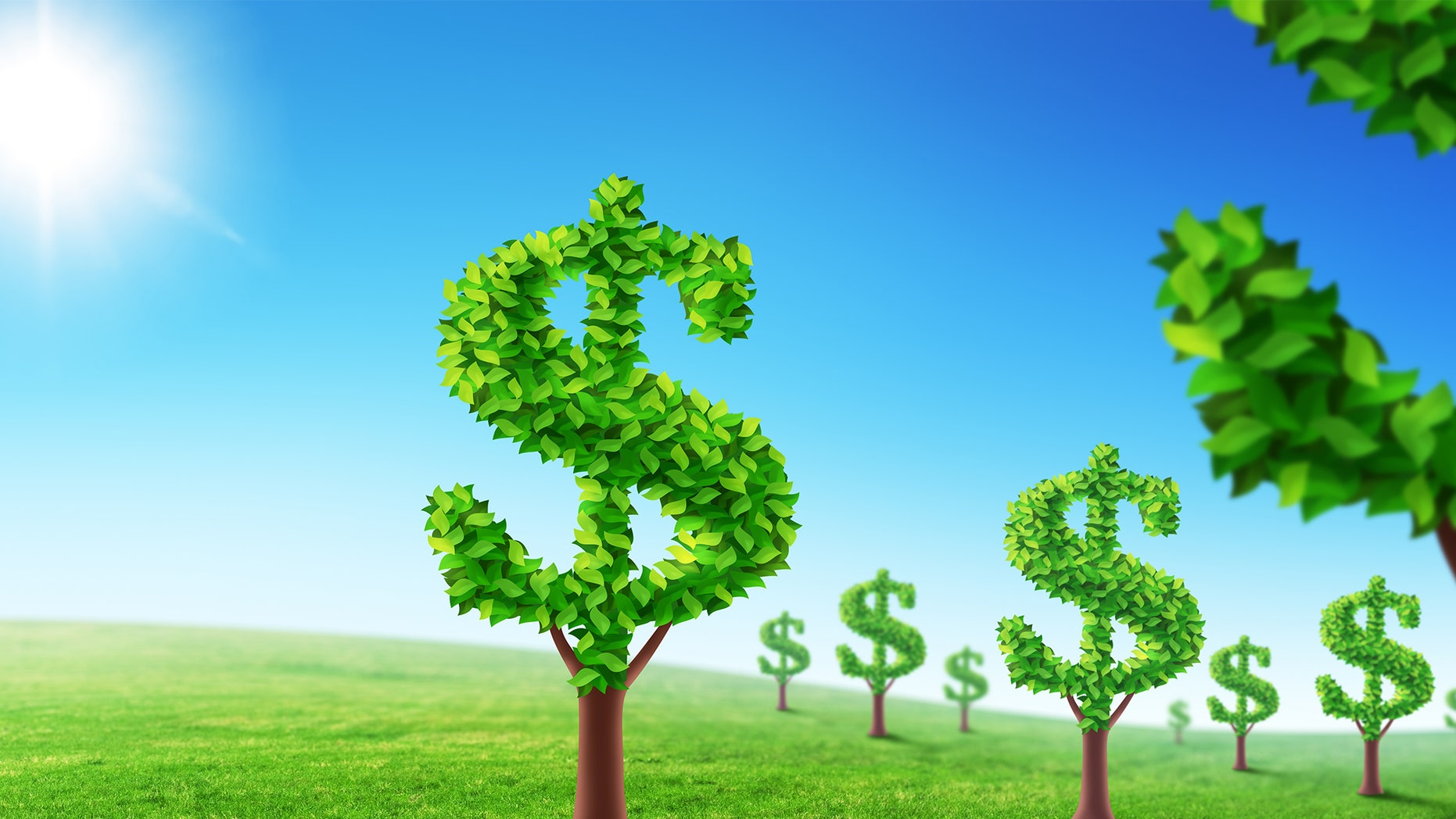 Money-shaped trees
