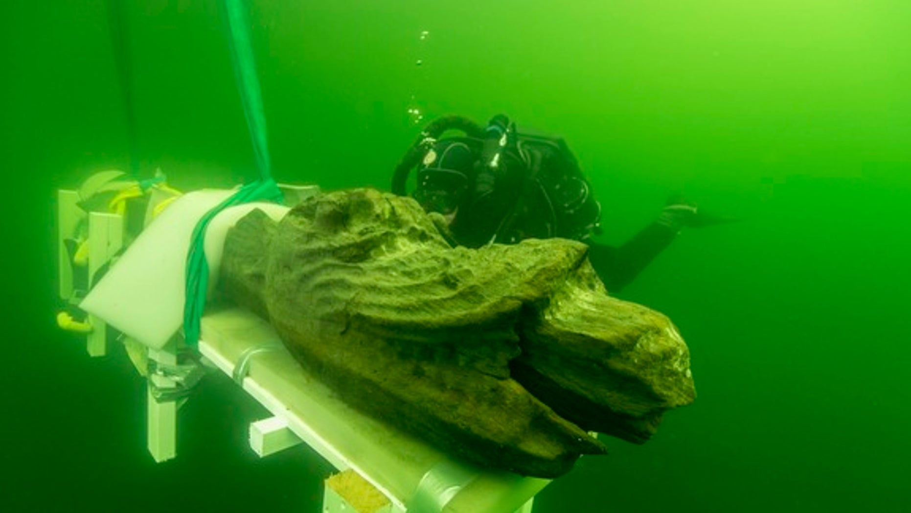 """Divers recently retrieved the monster-headed figurehead of a Danish warship known as the """"Gribshunden,"""" or """"grip dog,"""" that sank beneath the waves in 1495 off the coast of  Sweden. The ship may be the only preserved warship from the time period"""