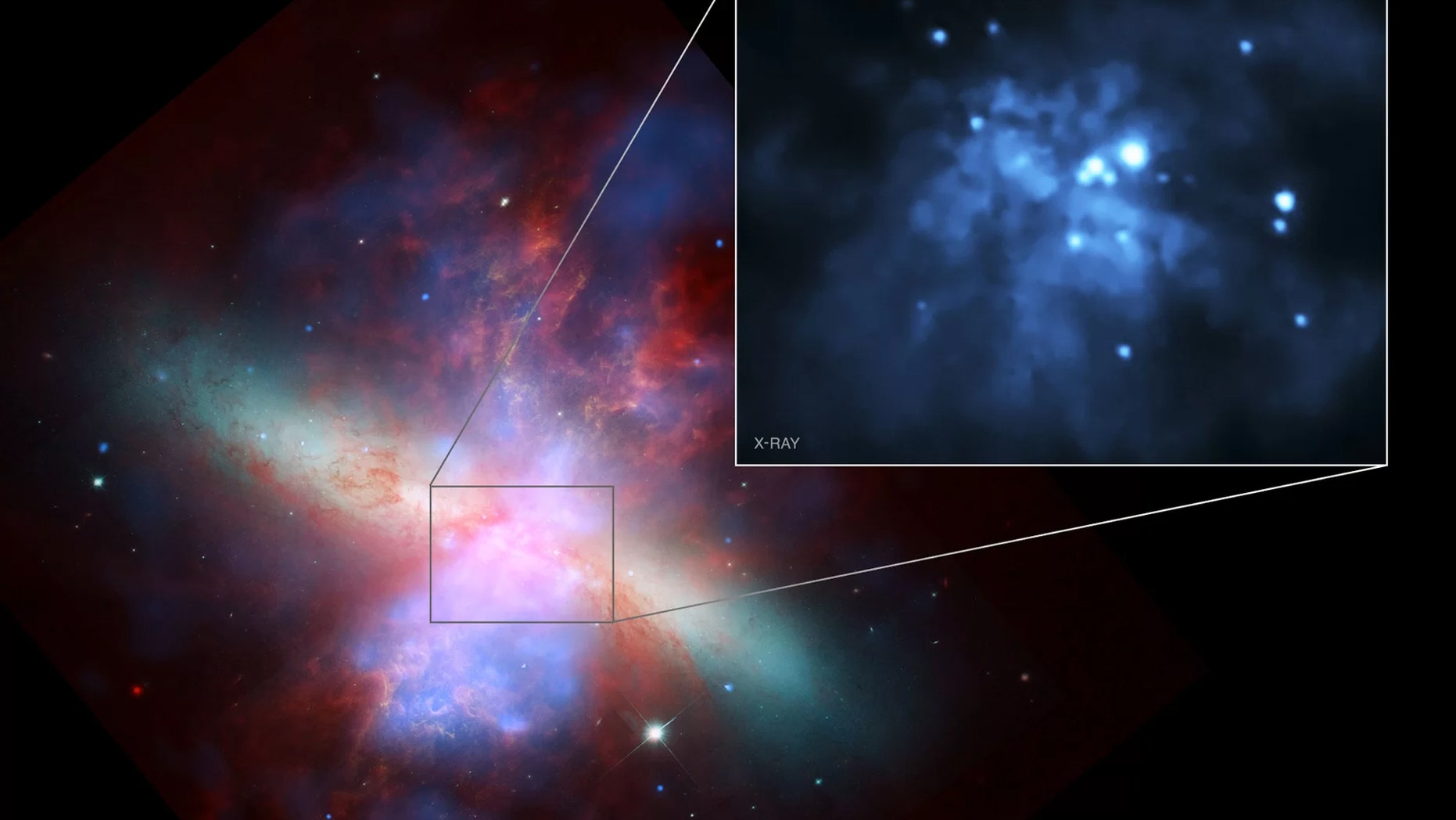 An image of the galaxy Messier 82 compiling data from NASA's Chandra X-Ray Observatory, Hubble Space Telescope and Spitzer Space Telescope. The intermediate-mass black hole M82 X-1 is the brightest object in the inset, at about 2 o'clock near the galaxy's center. Credit: NASA/H. Feng et al.