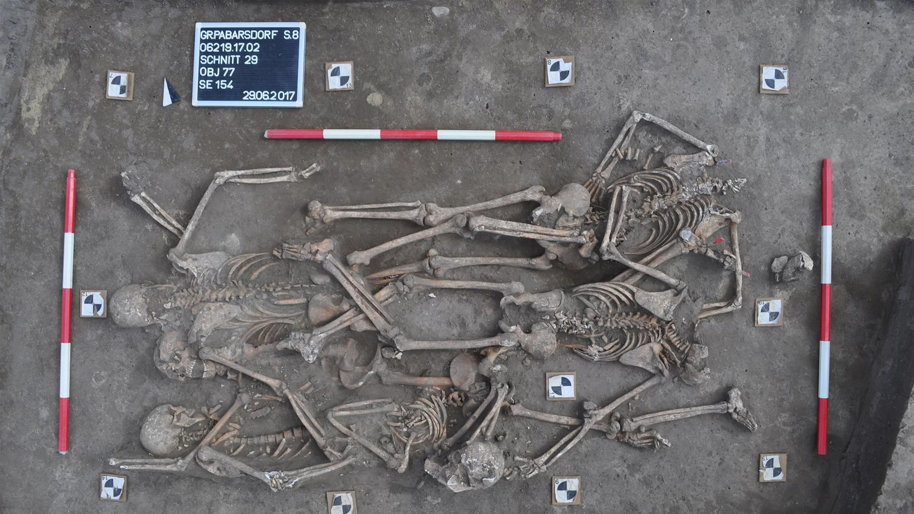 Since excavations began in 2017 in a town northeast of Vienna, several mass graves have been found at the site of one of the biggest battles of the Napoleonic Wars, during which some 55,000 soldiers died in July 1809. Credit: Novetus