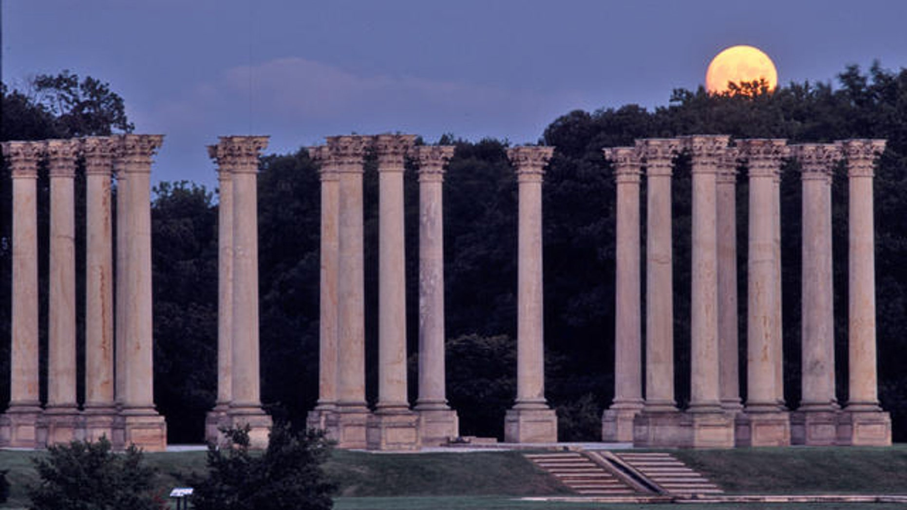 This undated photo released by the National Arboretum shows the National Capitol Columns at the U.S. National Arboretum in Washington.