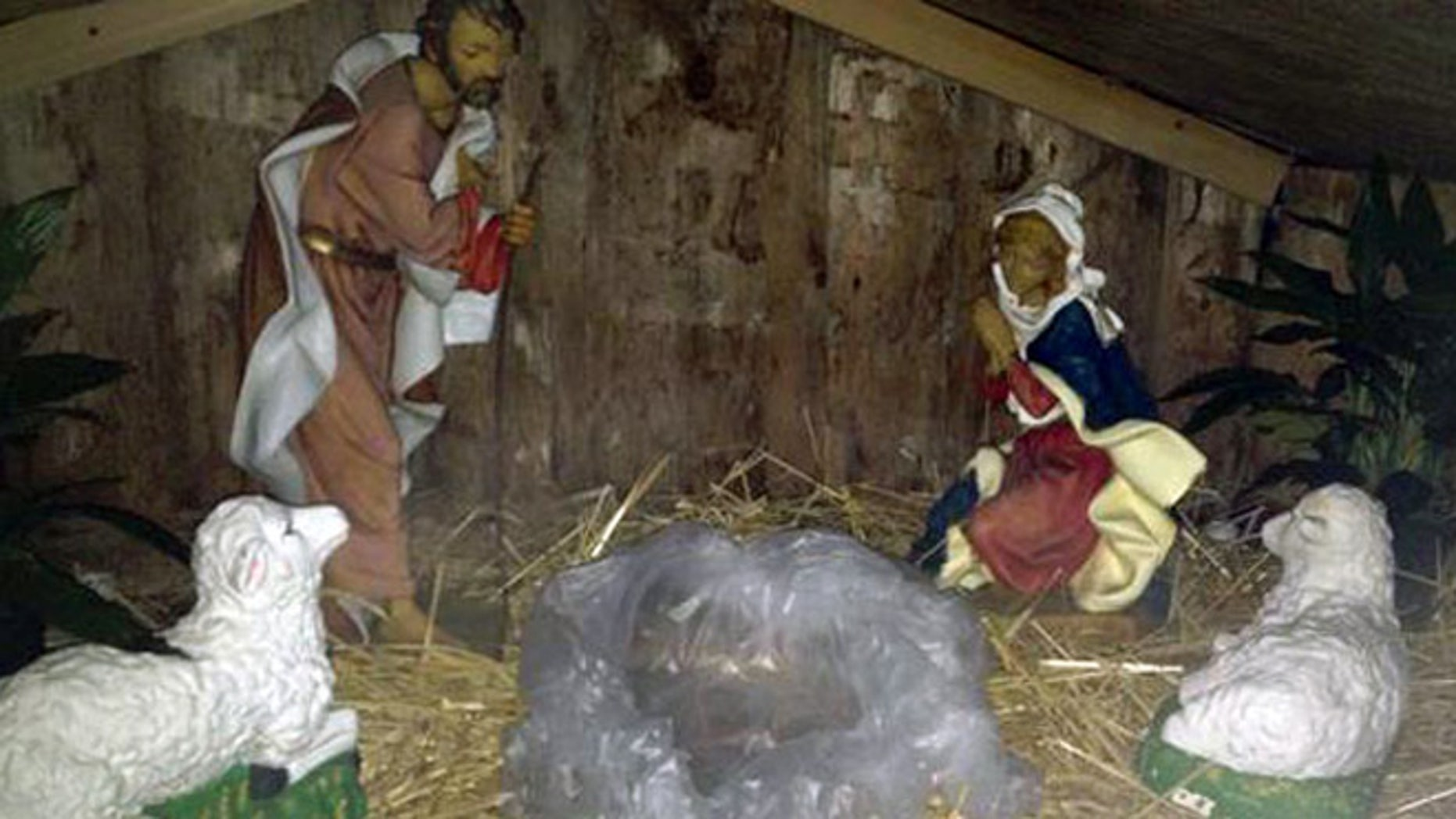 Massachusetts police say someone stole a baby Jesus statue from a Nativity scene on Christmas morning and replaced it with a severed pig's head.