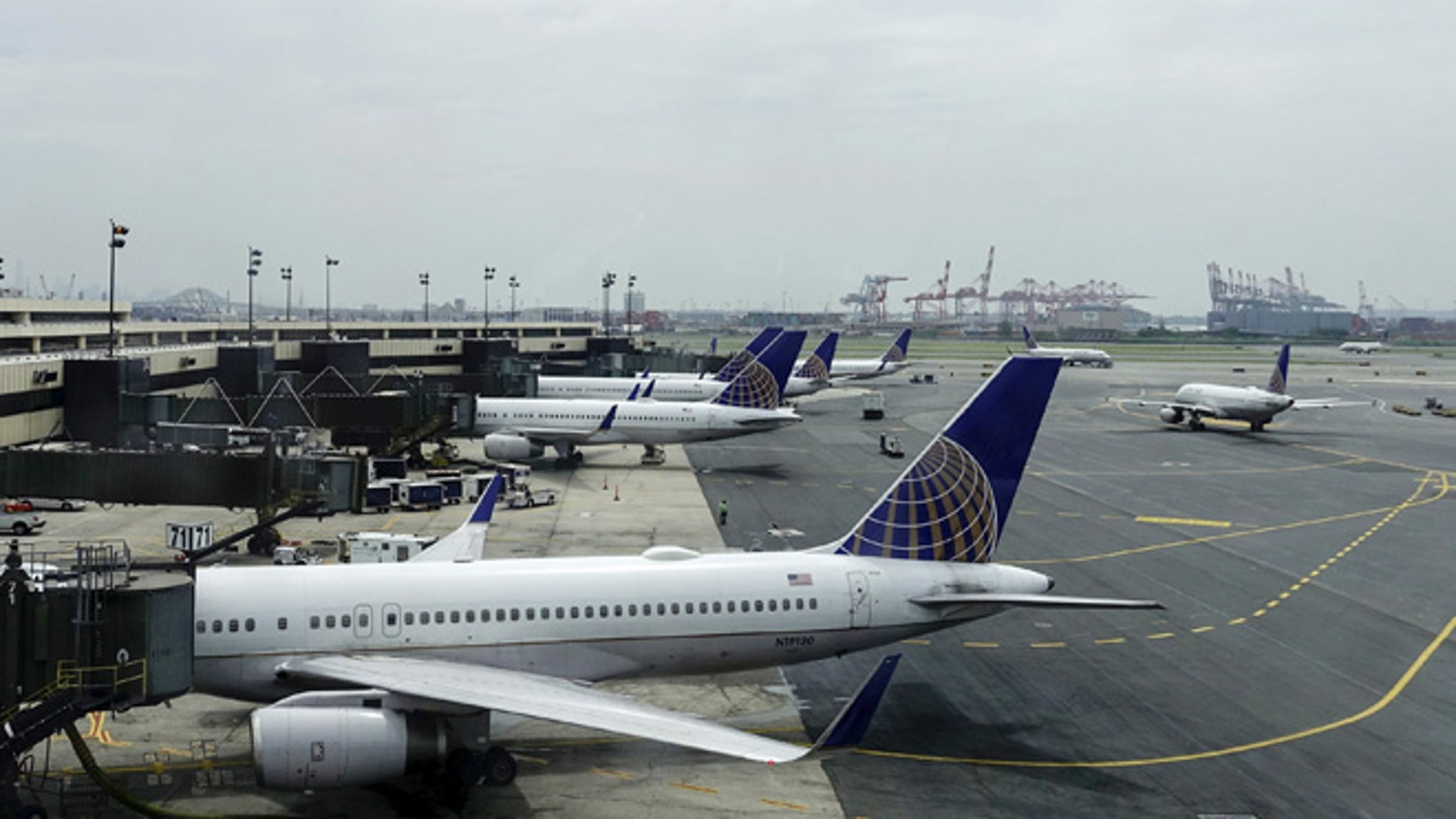 File photo -United Airlines planes are seen on platform at the Newark Liberty International Airport in New Jersey, July 8, 2015. (REUTERS/Eduardo Munoz)