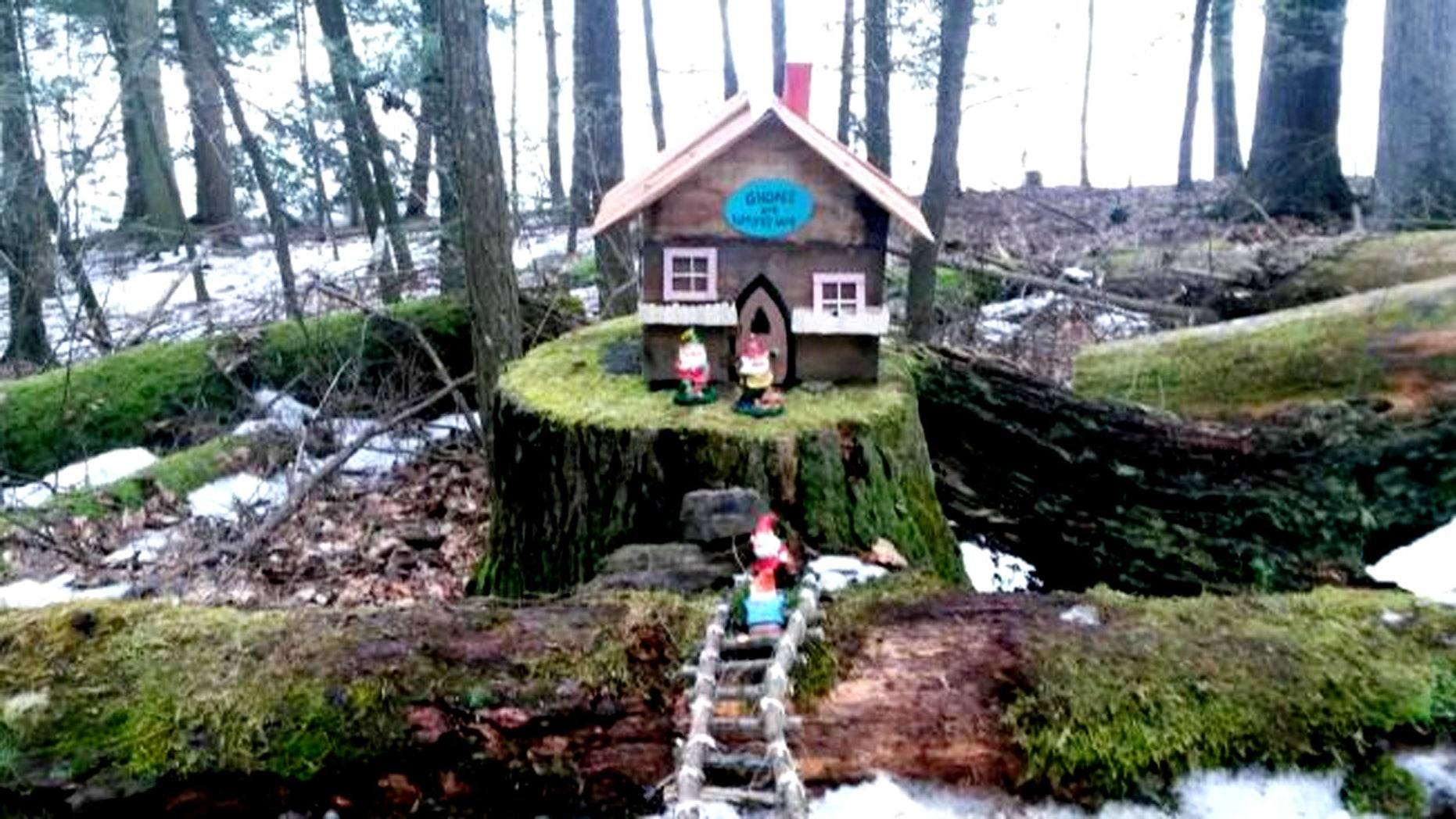 The mini houses in Little Buffalo State Park need to be removed by Feb. 29.