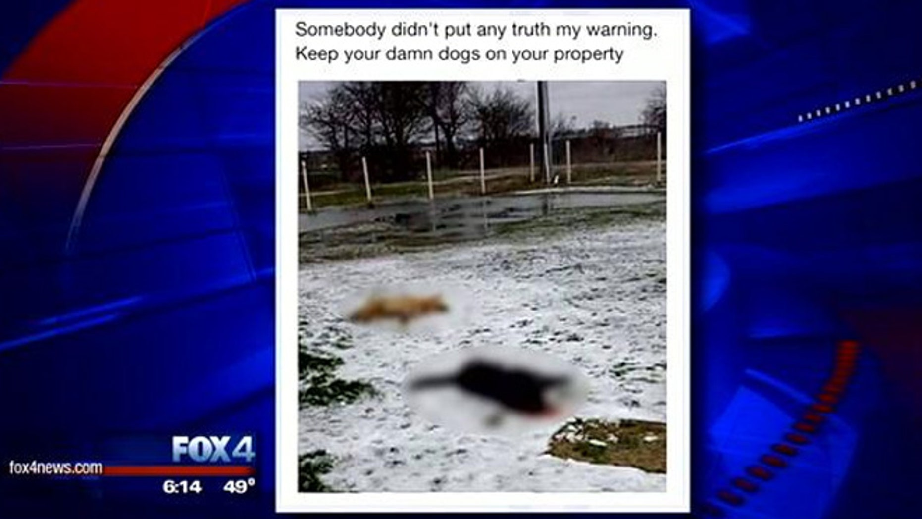 A volunteer firefighter in Hunt County has reportedly resigned and could face criminal charges over a social media post suggesting he shot two dogs.