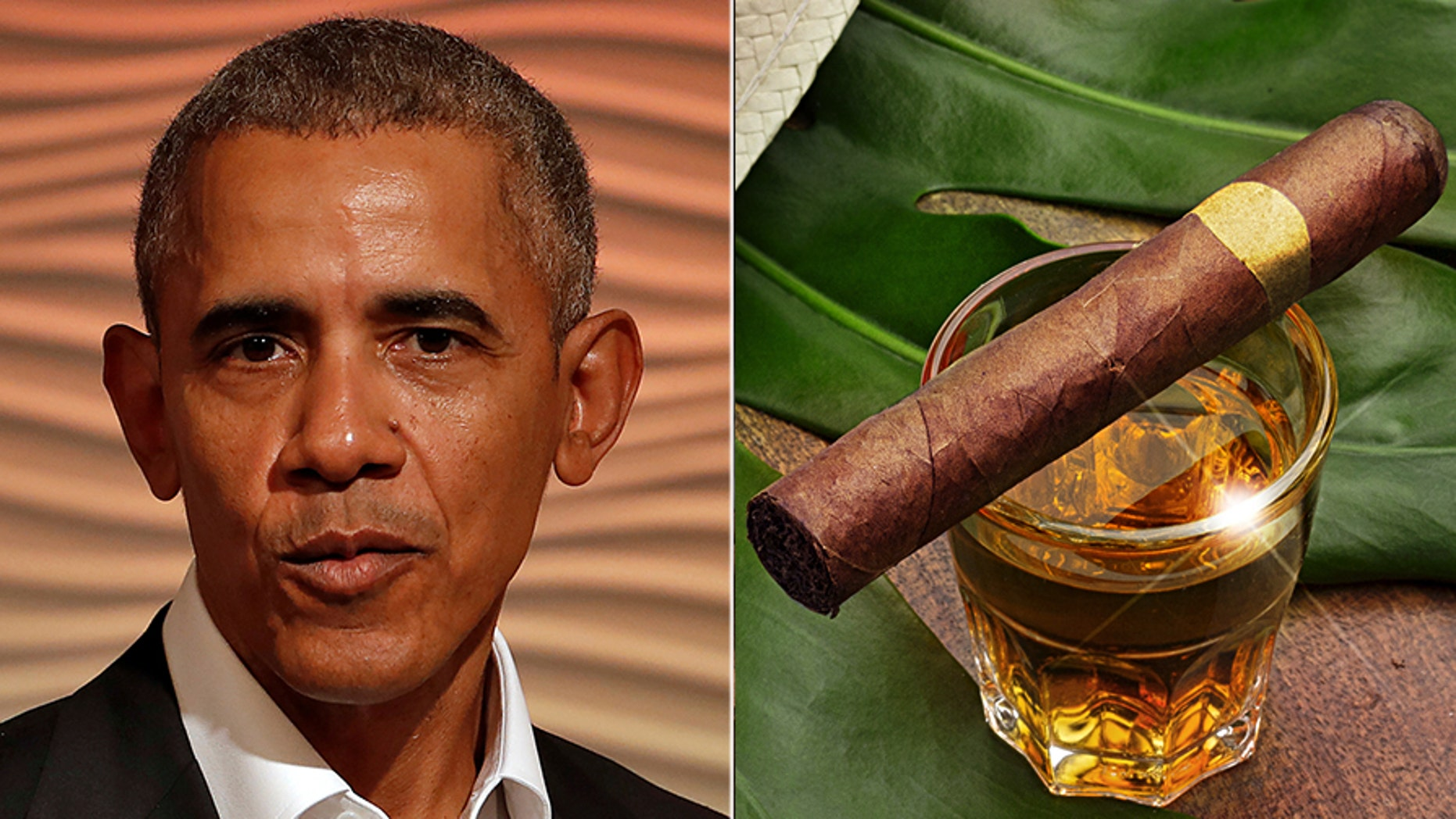 Federal documents revealed that President Barack Obama, his family and a top official received gifts from the Cuban government and other foreign friends during his final two years in office.