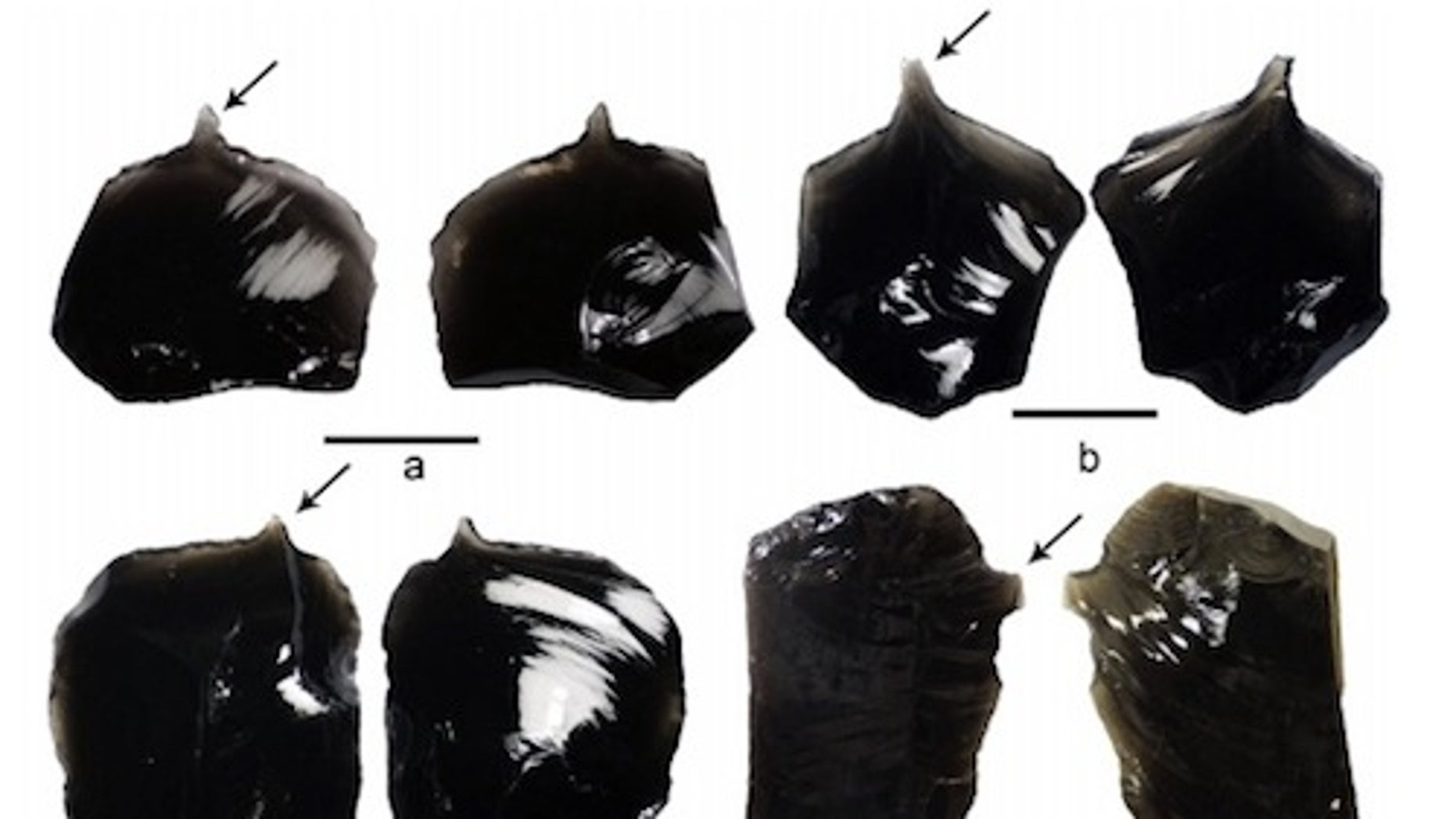 Archaeologists analyzed 15 obsidian artifacts recovered from the Nanggu site in the Solomon Islands and found that they were likely used for tattooing.