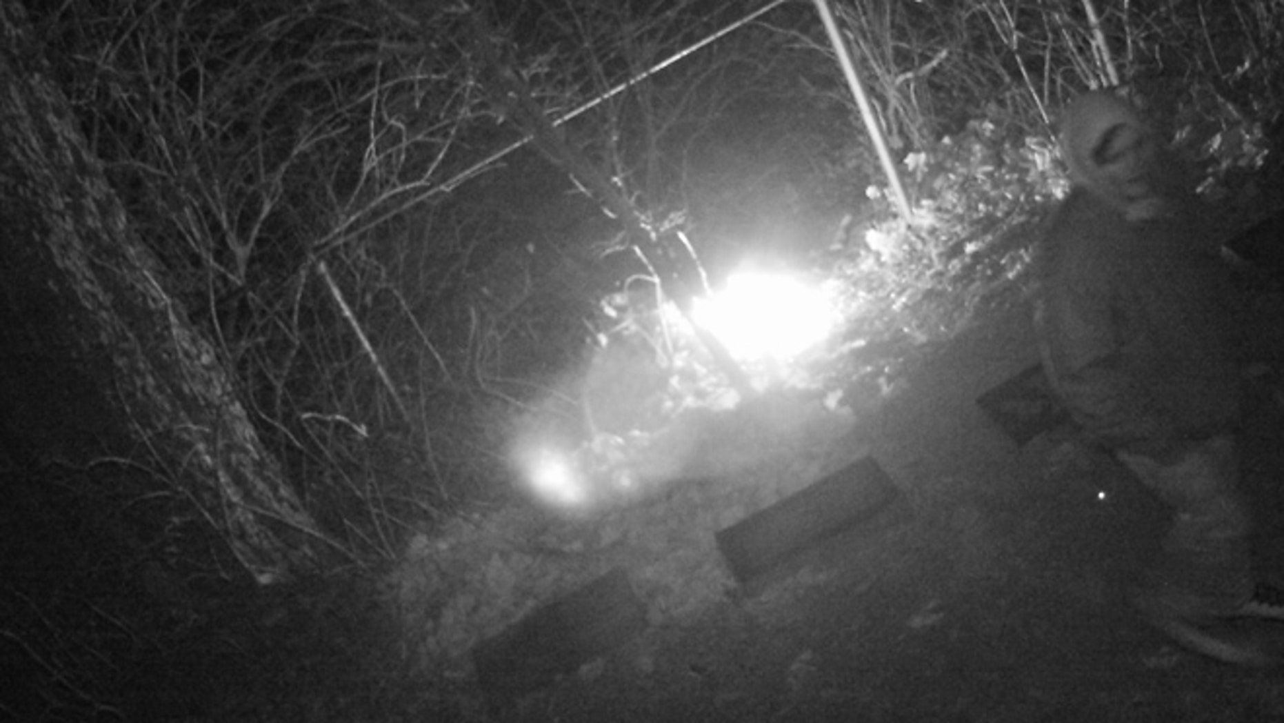 Surveillance images captured a fire at the cemetery.