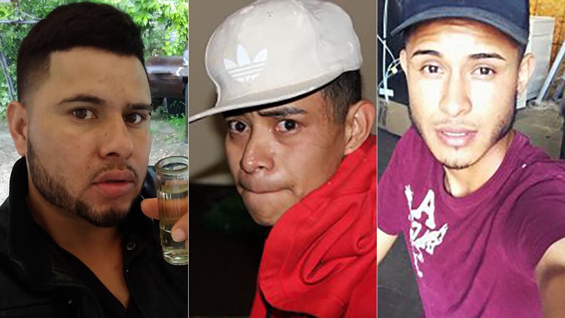 David Ramos Contreras, Rios Adiel and Arnuflo Ramos.