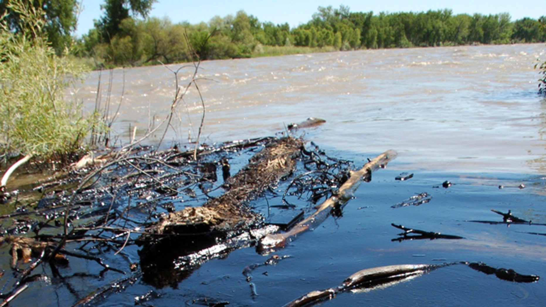 July 2,2011: Oil from a ruptured ExxonMobil pipeline is seen in the Yellowstone River and along its banks near Laurel, Mont.