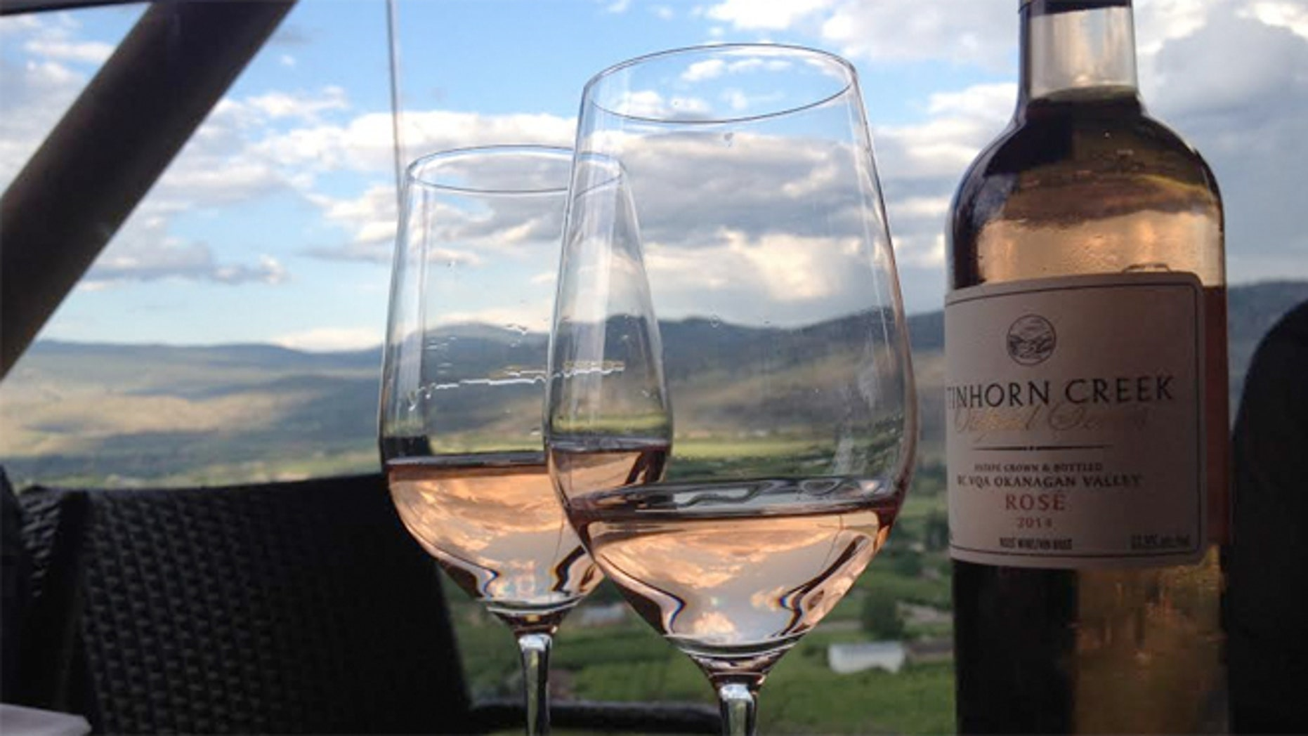 The Okanagan Valley has about 100 miles of microclimates and about 80 varietals of grapes.