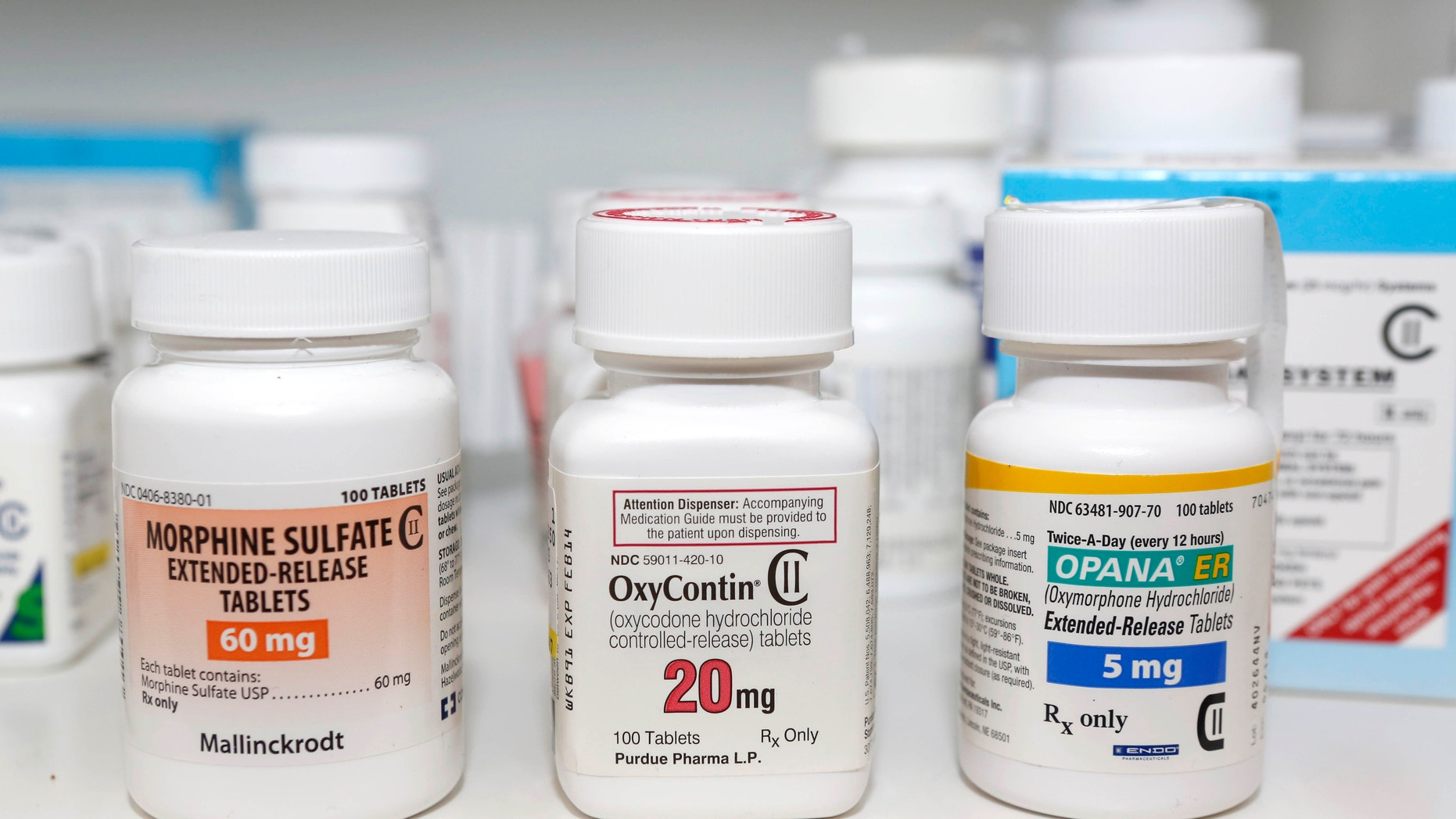 FILE - In this Jan. 18, 2013 file photo, Schedule 2 narcotics: Morphine Sulfate, OxyContin and Opana are displayed for a photograph in Carmichael, Calif. California doctors will be required to check a database of prescription narcotics before writing scripts for addictive drugs under legislation Gov. Jerry Brown signed Tuesday, Sept. 27, 2016, that aims to address the scourge of opioid abuse. (AP Photo/Rich Pedroncelli, File)