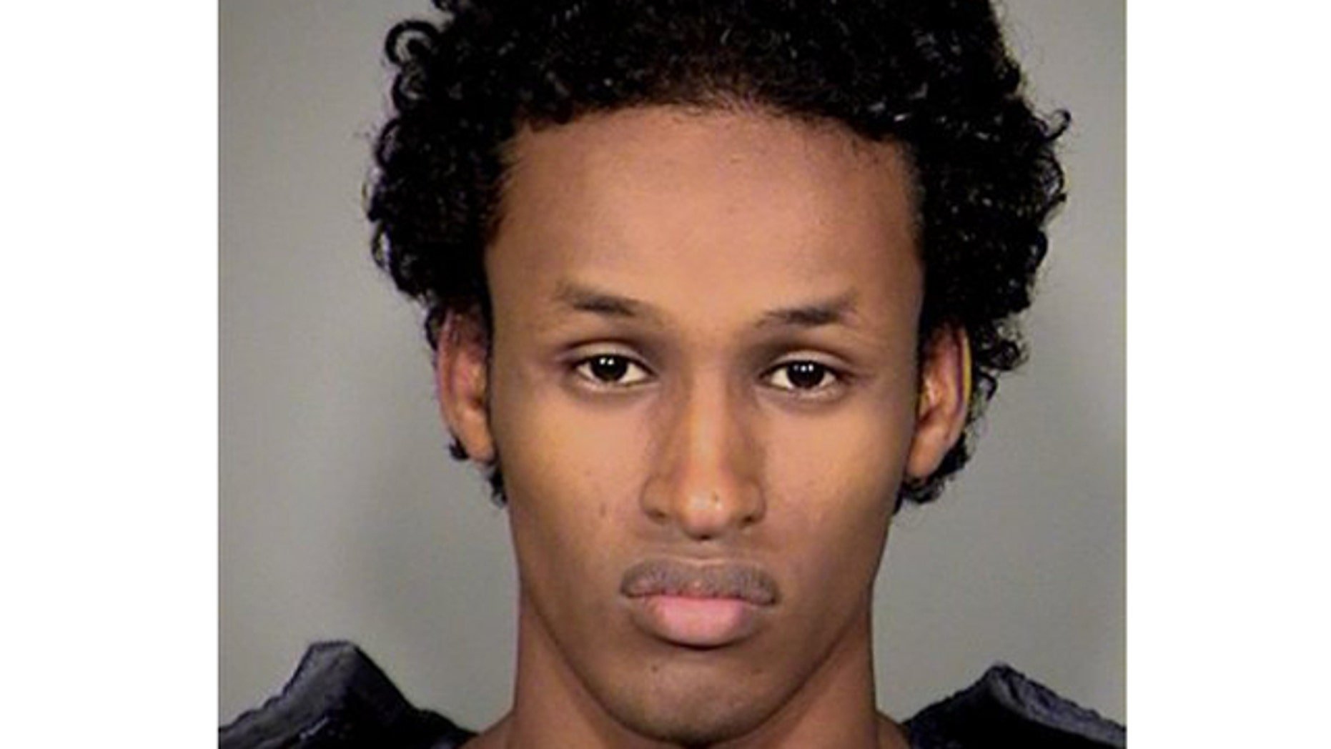 Nov. 27: Somali-born Mohamed Osman Mohamud, 19, was arrested in a sting operation as he tried blowing up a van full of what he believed were explosives at a crowded Christmas tree lighting ceremony, federal authorities said.
