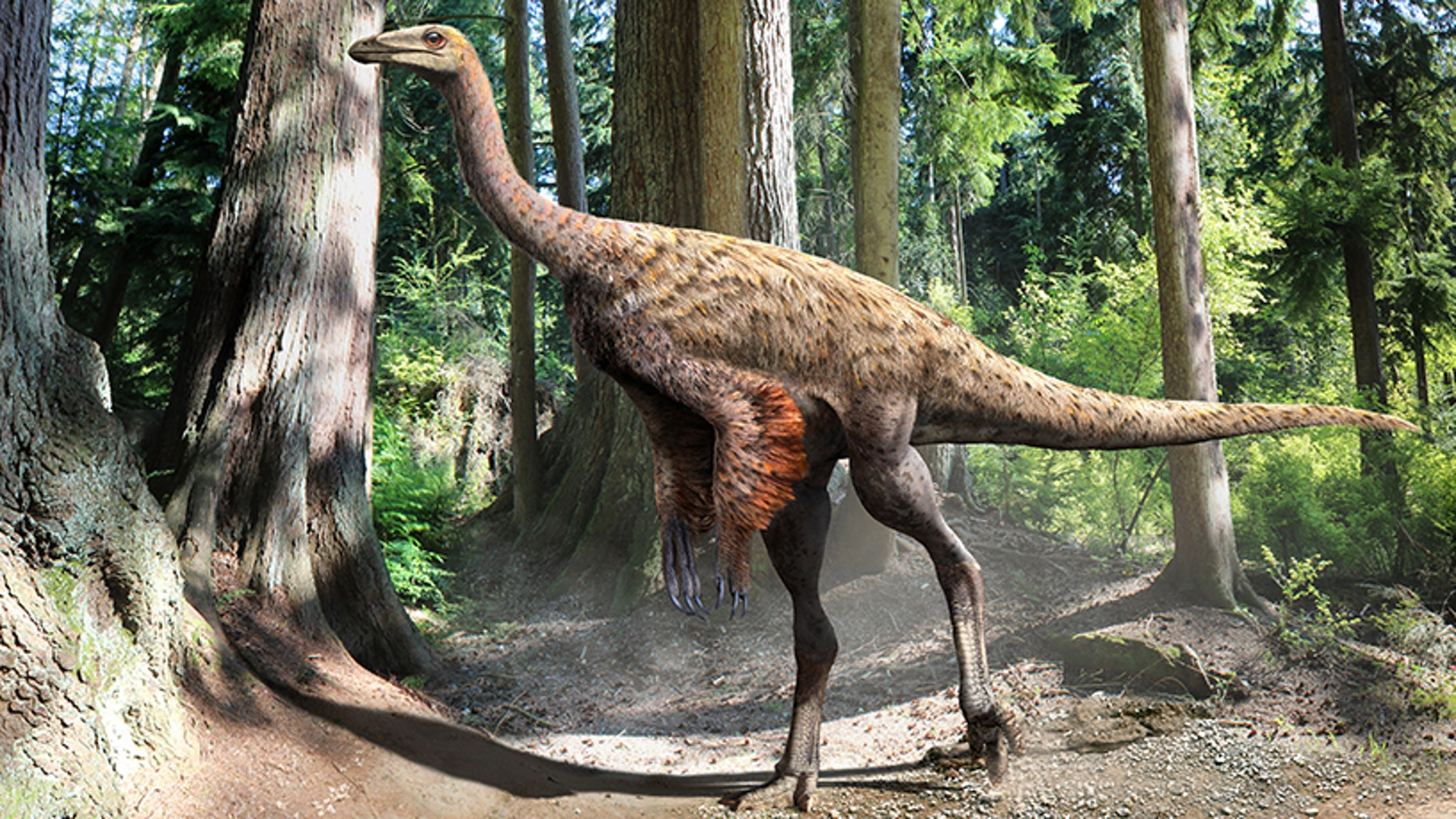 Illustration of Ornithomimus, by Julius Csotonyi, based on the findings of preserved tail feathers and soft tissue.