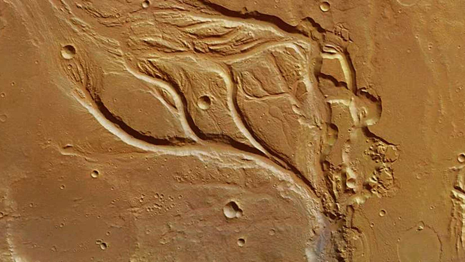 The central portion of Osuga Valles on Mars resembles features found in the arid deserts of Arizona, rather than those formed by emerging groundwater in Florida.