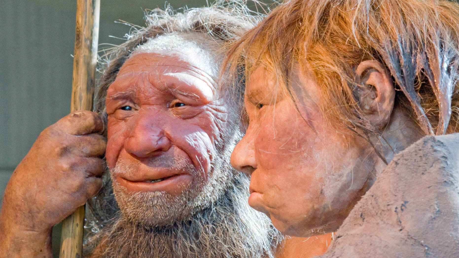 FILE - This Friday, March 20, 2009 file photo shows reconstructions of a Neanderthal man, left, and woman at the Neanderthal museum in Mettmann, Germany. A new study released by the journal Science on Thursday, Feb. 1, 2016 says a person's risk of becoming depressed or hooked on smoking may be influenced by DNA inherited from Neanderthals. (AP Photo/Martin Meissner)