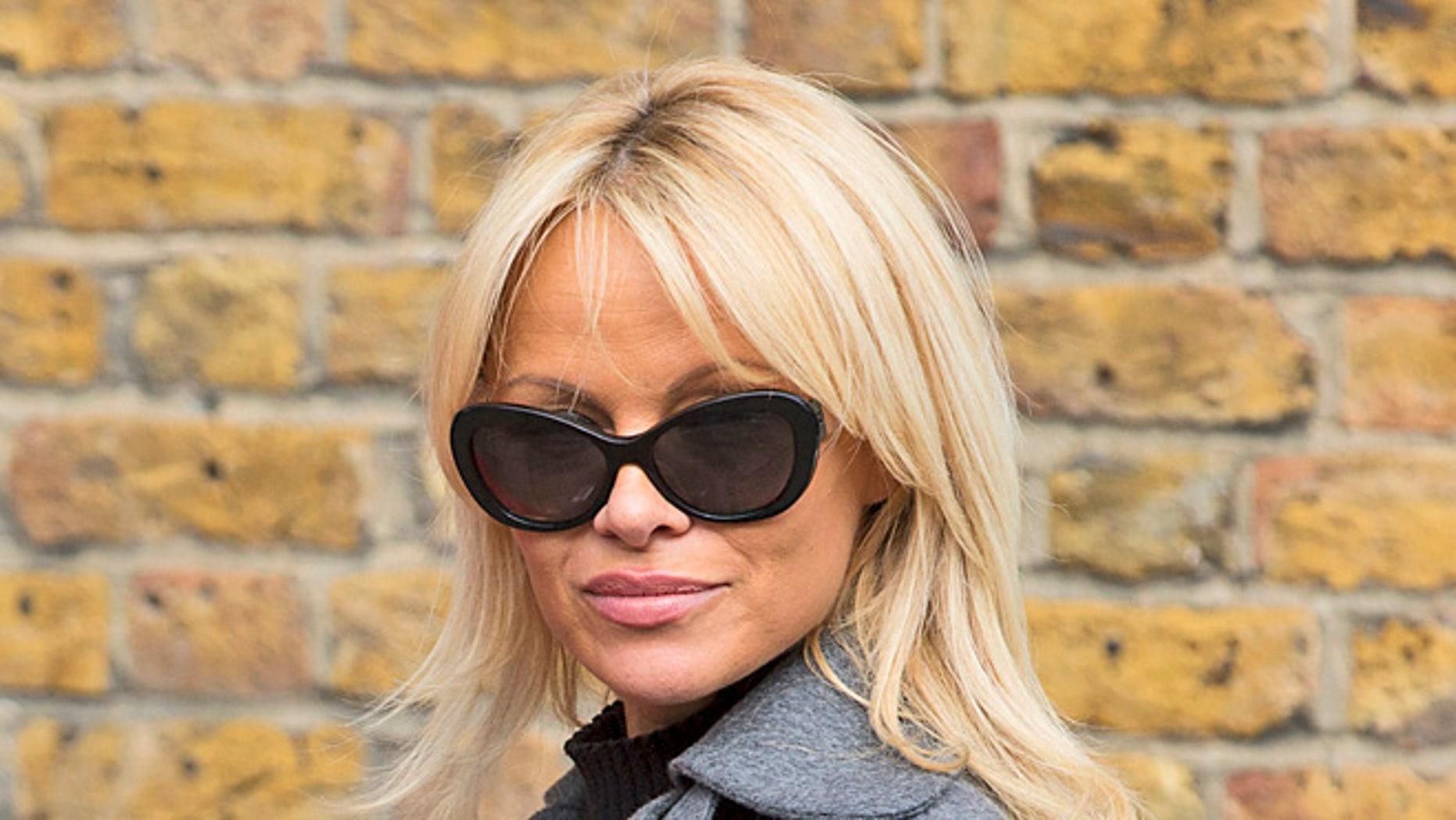 Pamela Anderson dropped off a vegan meal for WikiLeaks chief Julian Assange.