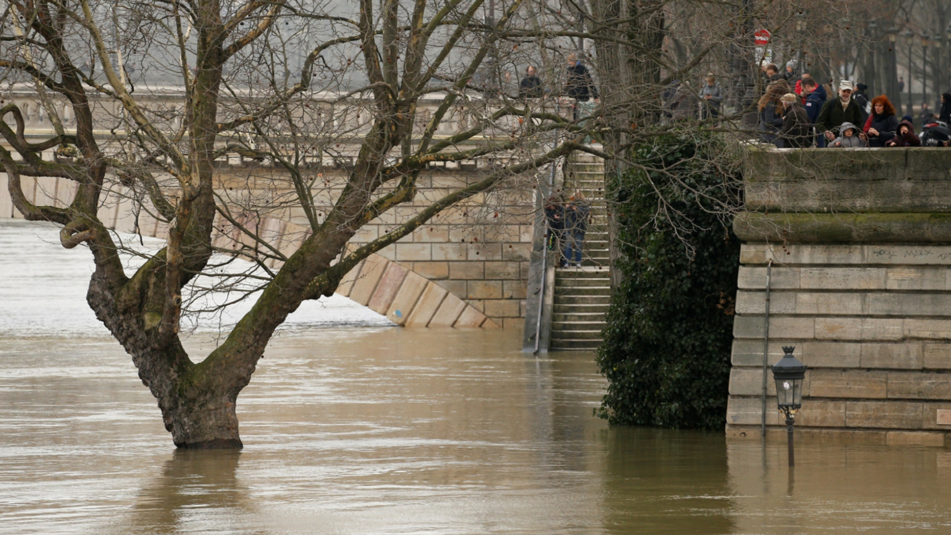 A street lamp and a tree are seen on the flooded banks of the River Seine in Paris, France, after days of almost non-stop rain, Jan. 27, 2018.