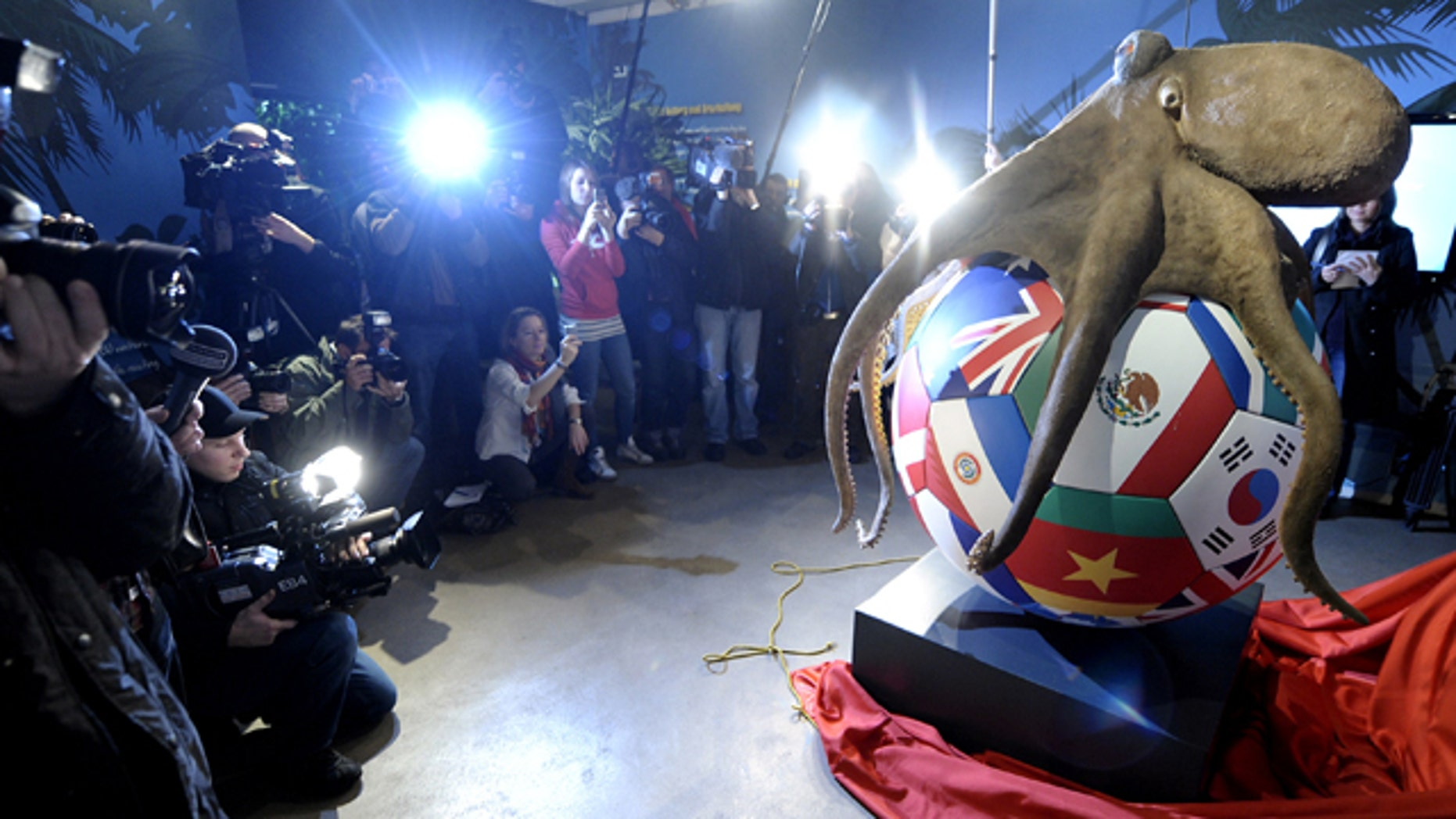 The two-meter-tall monument has been revealed for Paul the Octopus, the tentacled tipster who fascinated football fans by correctly predicting results at last year's World Cup.