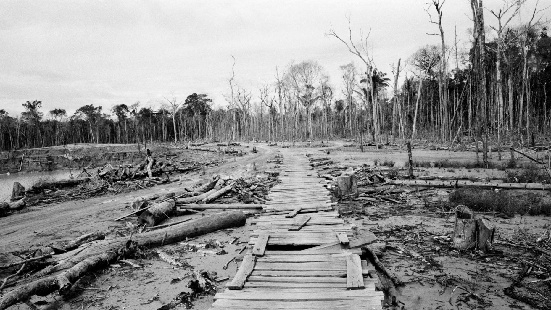 May 16, 2014: Wood slats serve as a makeshift walkway built by wildcat miners, at an abandoned mining camp, in La Pampa in Peru's Madre de Dios region.