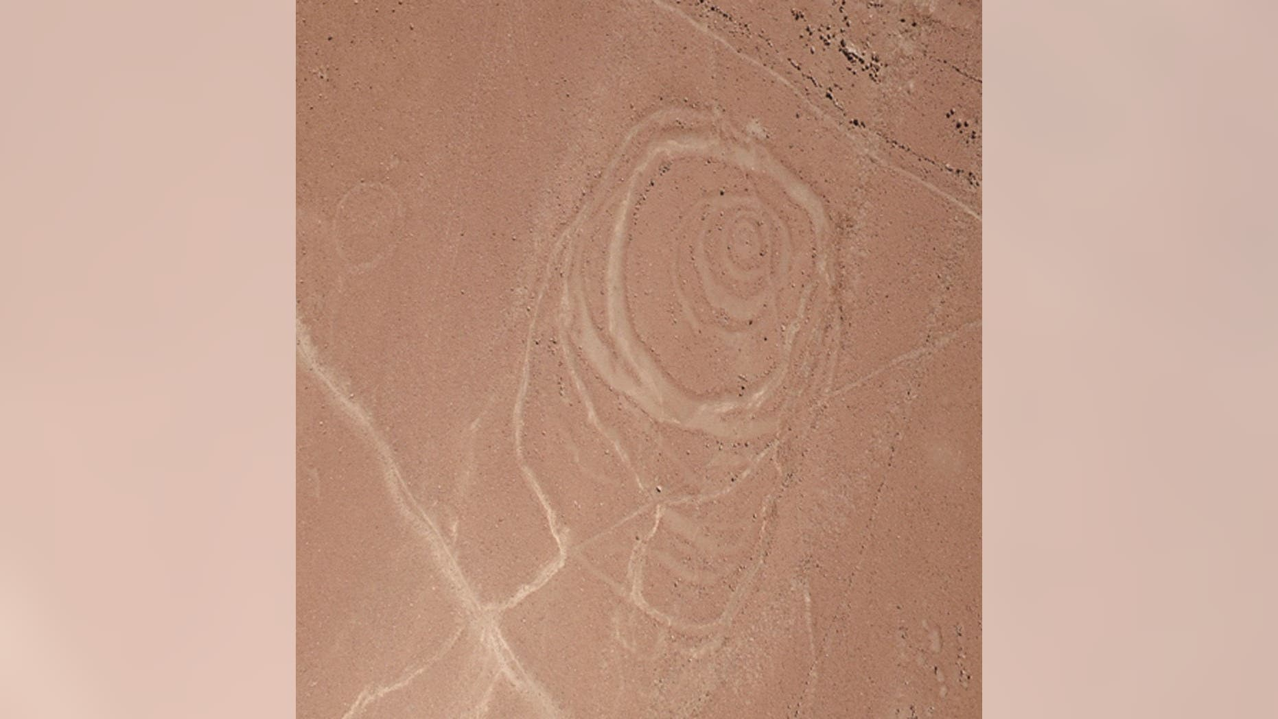 One of the complex circular geoglyphs the team mapped at Quilcapampa, in the Sihuas Valley in Peru, has at least six rings arranged in an irregular pattern. (Credit: Photo courtesy Justin Jennings)
