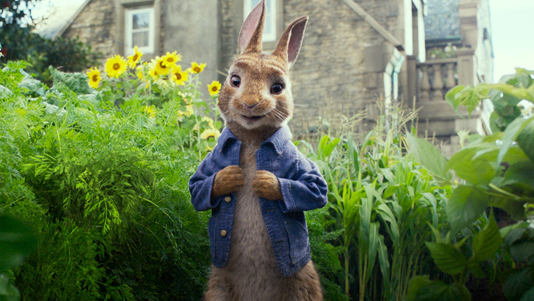 Parents are angry with Peter Rabbit after a scene shows him whip blackberries at someone with an blackberry allergy until the man falls on the floor choking.