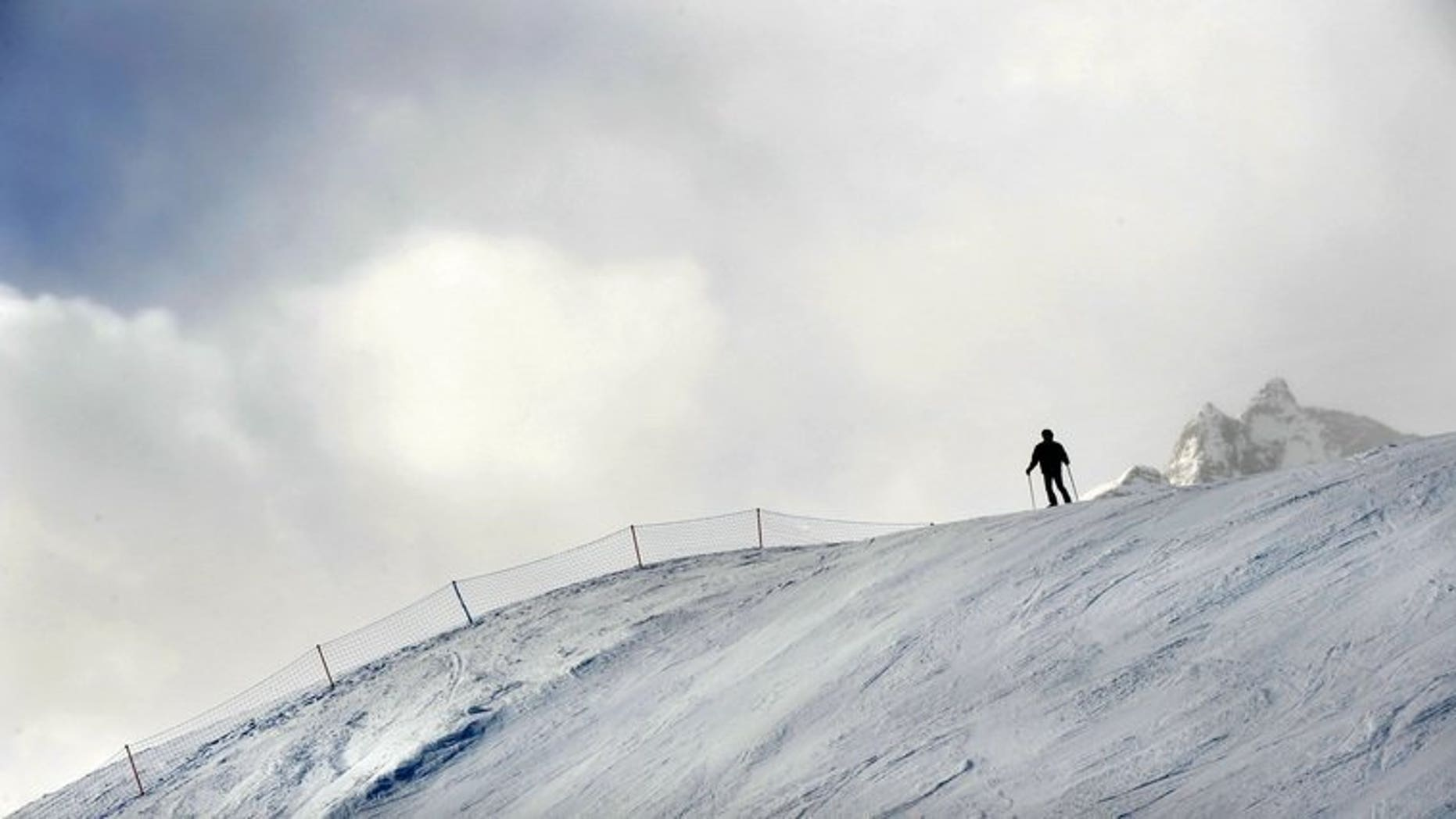 Max Gartner, Alpine Canada's chief executive, said Wednesday he will resign once a new leader is found, a change at the top coming only eight months before the 2014 Sochi Winter Olympics.