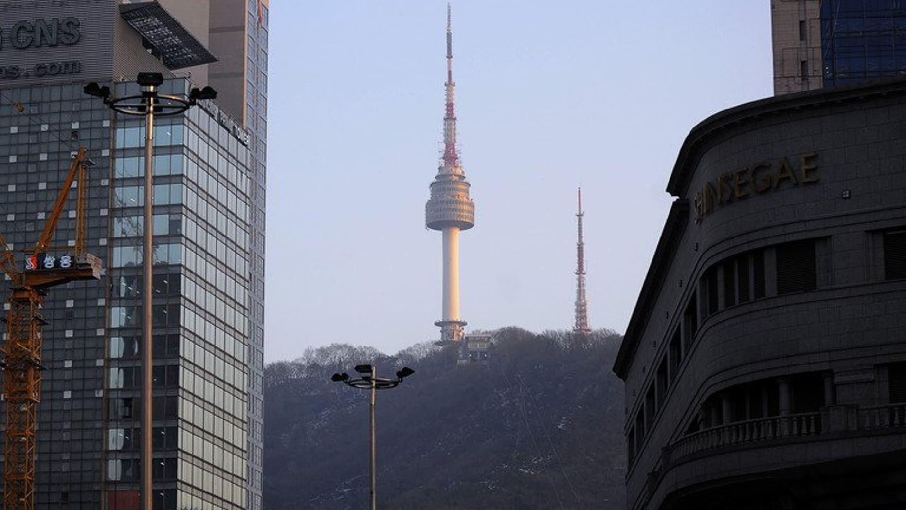 The N Seoul Tower is seen on the top of Nam mountain, on February 22, 2010. South Korea issued a cyber attack alert on Tuesday after hackers apparently penetrated a number of official websites, including the presidential Blue House, according to the science ministry.