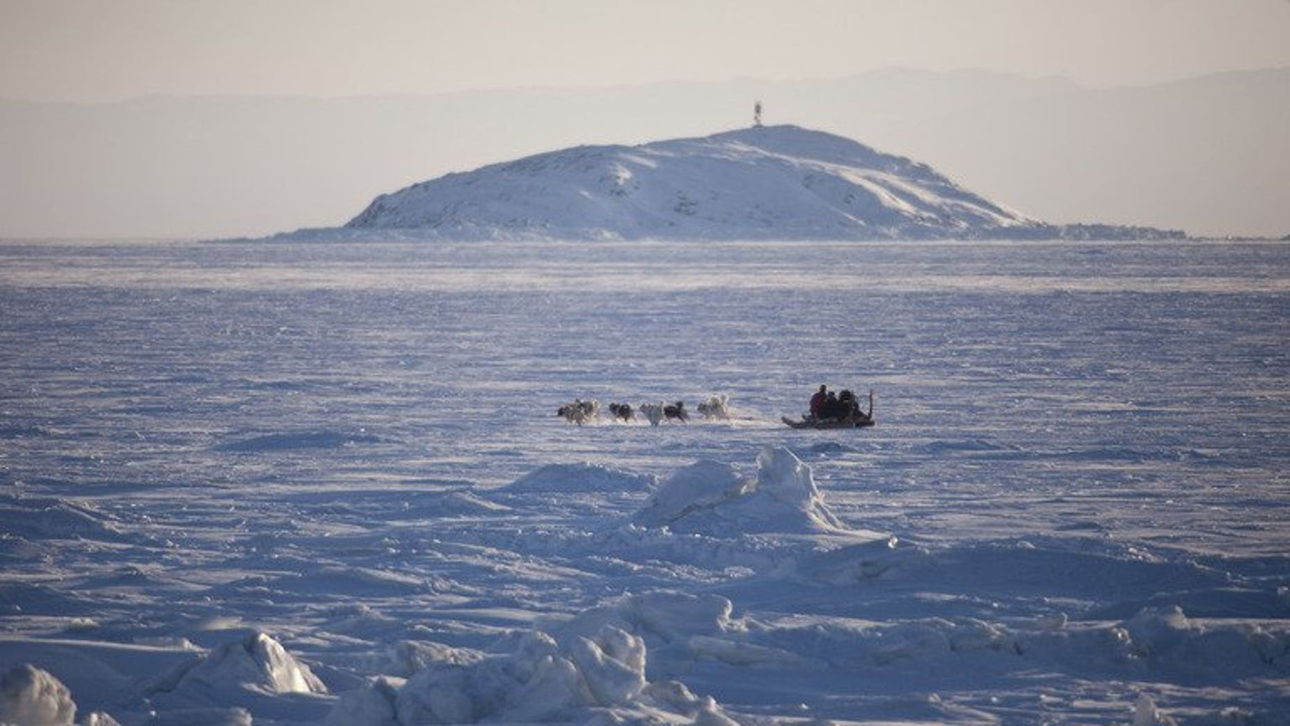 A dogsled crosses a frozen bay in Nunavut, Canada, February 5, 2010. Twenty tourists became stranded on an Arctic ice floe when the ice they were walking on broke away from land in the remote province.